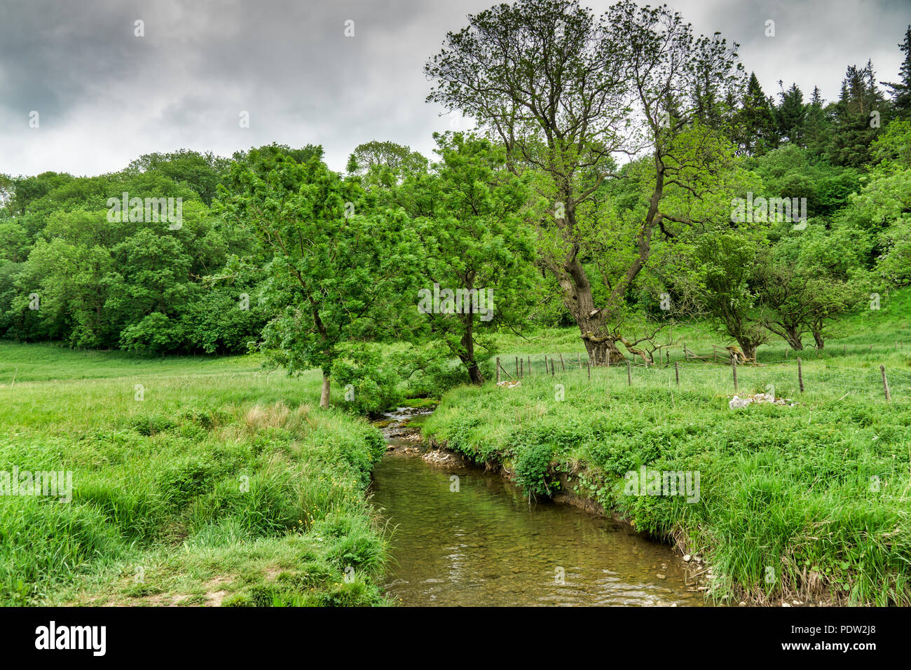A stream flowing through lush, green countryside. Stock Photo
