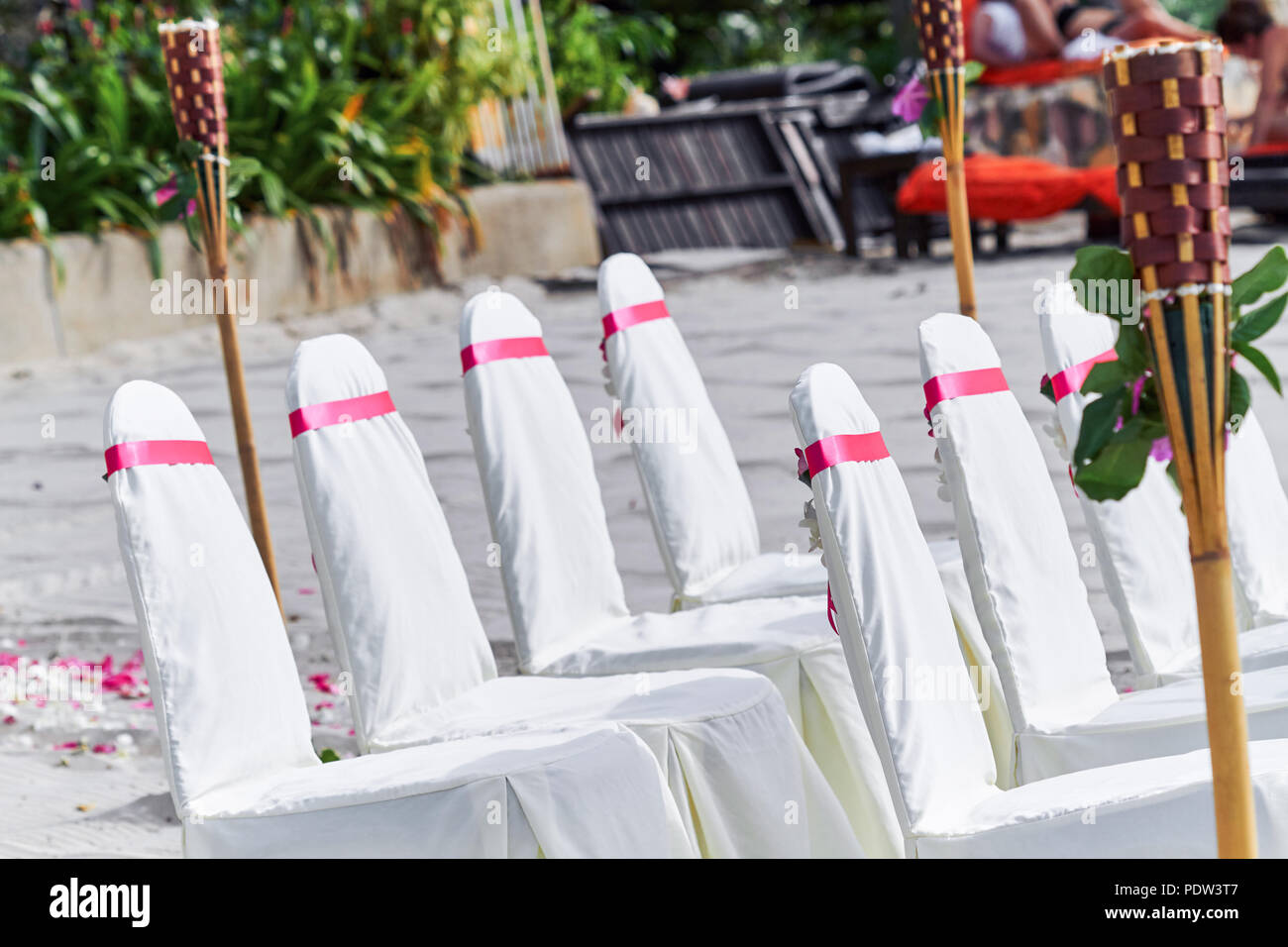 Wedding Chairs Spandex White Cover Decorating With Red Pink Organza Sash Line Up For Beach Wedding Venue Settings Stock Photo Alamy