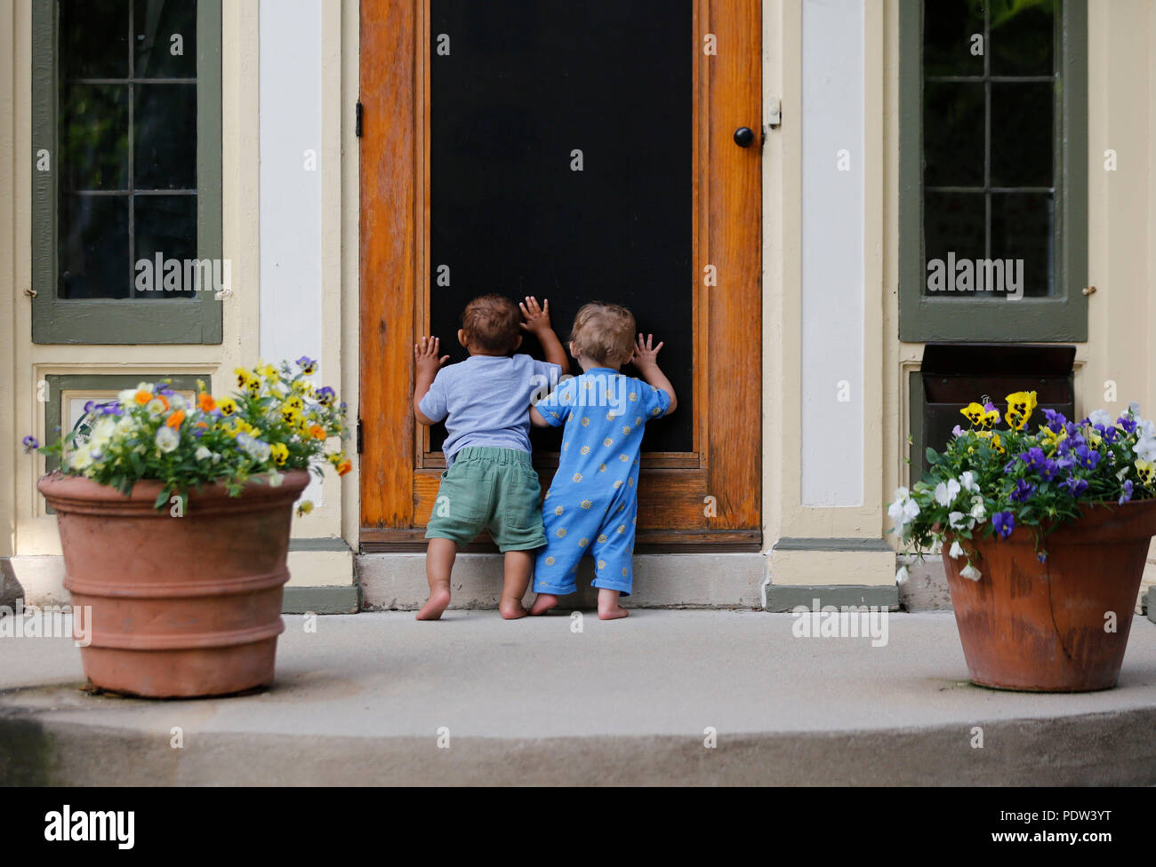 Two Toddler Boys Investigate The Inside Of An Home By Looking Through The Screen  Door.
