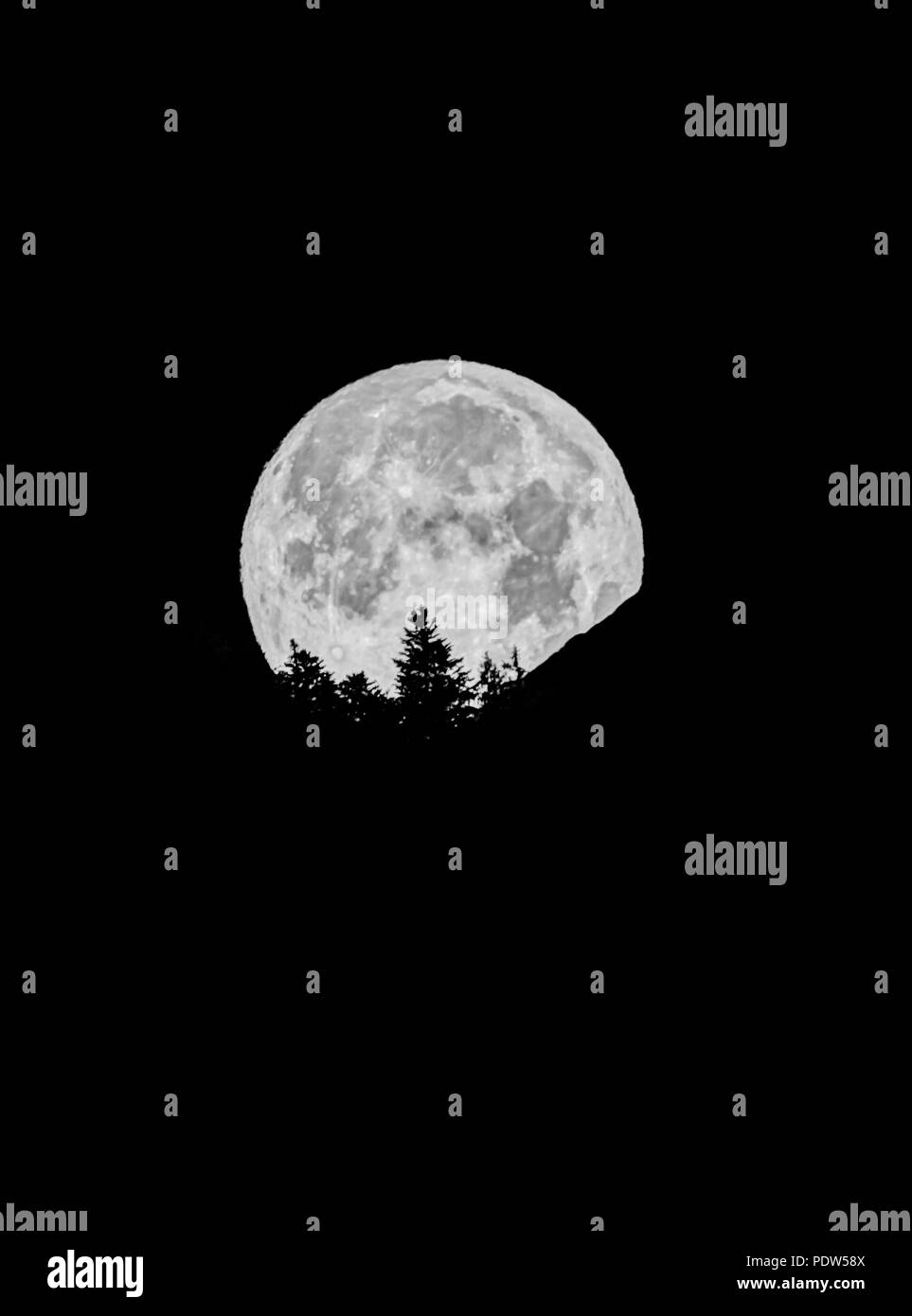 A full moon disappears behind a mountain and tree silhouette in a black night sky - Stock Image