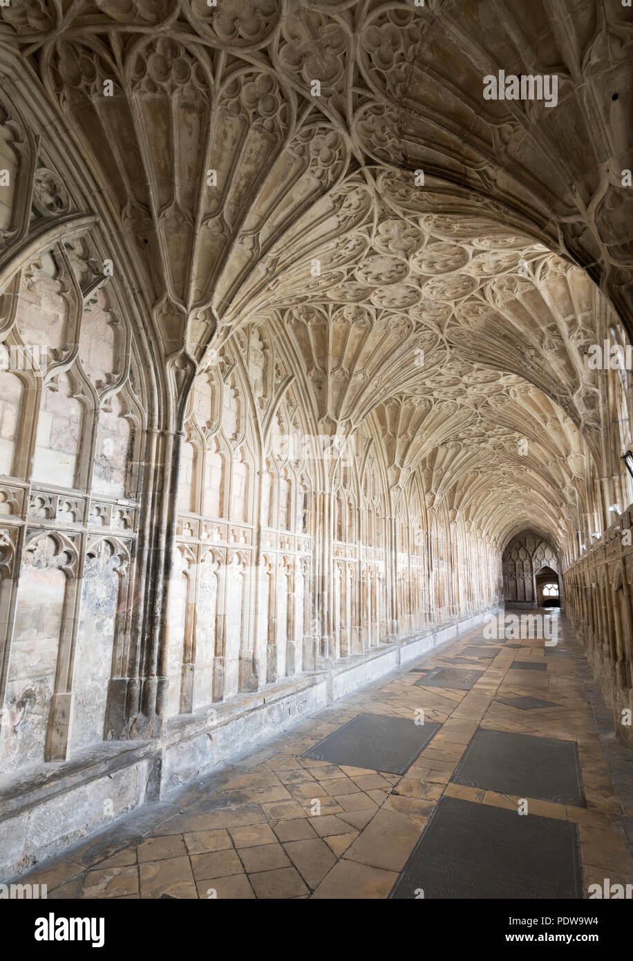 Fan vaulting within the cloister of Gloucester cathedral, England, UK - Stock Image