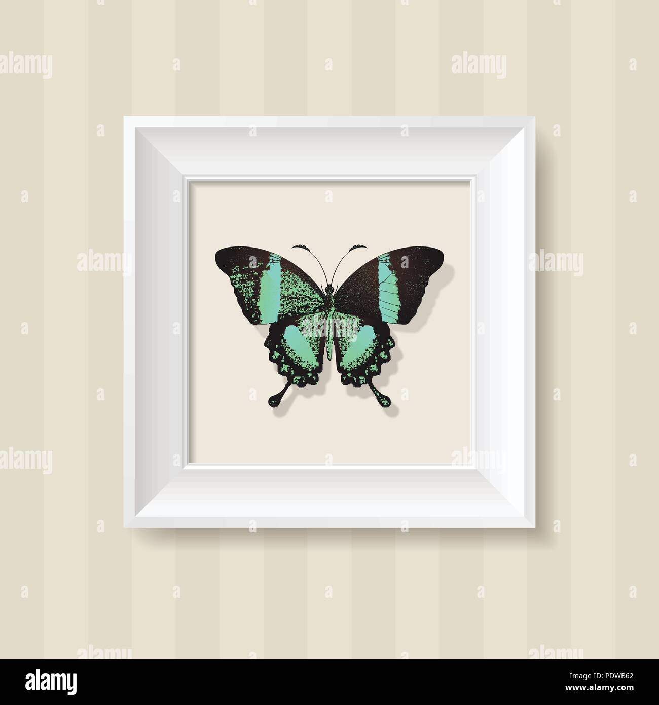 green butterfly in a white frame on a wall background - Stock Vector