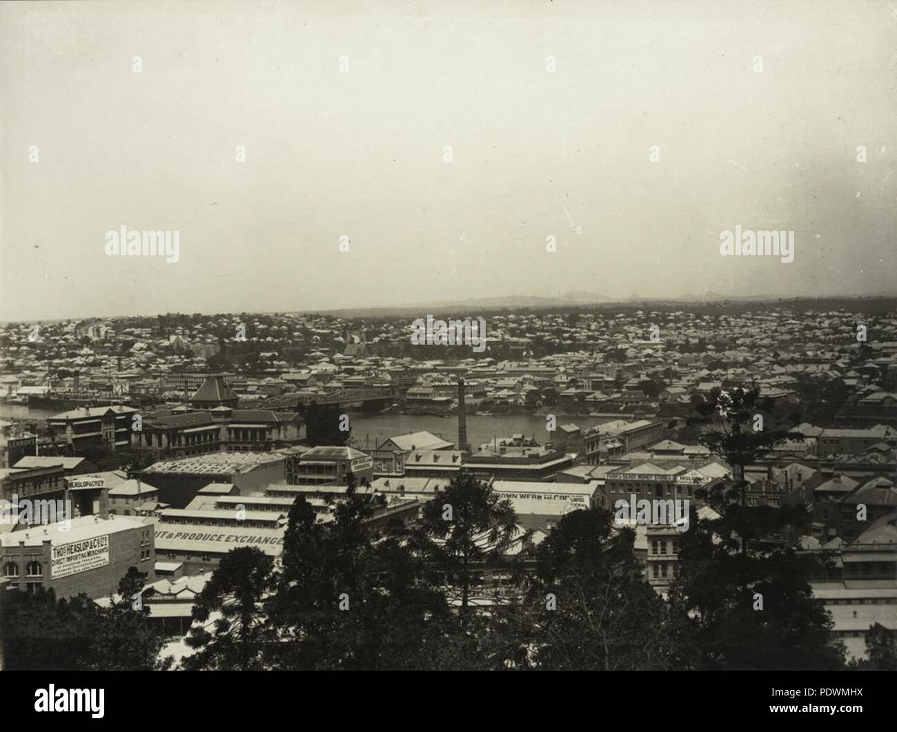 257 StateLibQld 1 254841 City of Brisbane panorama - Stock Image