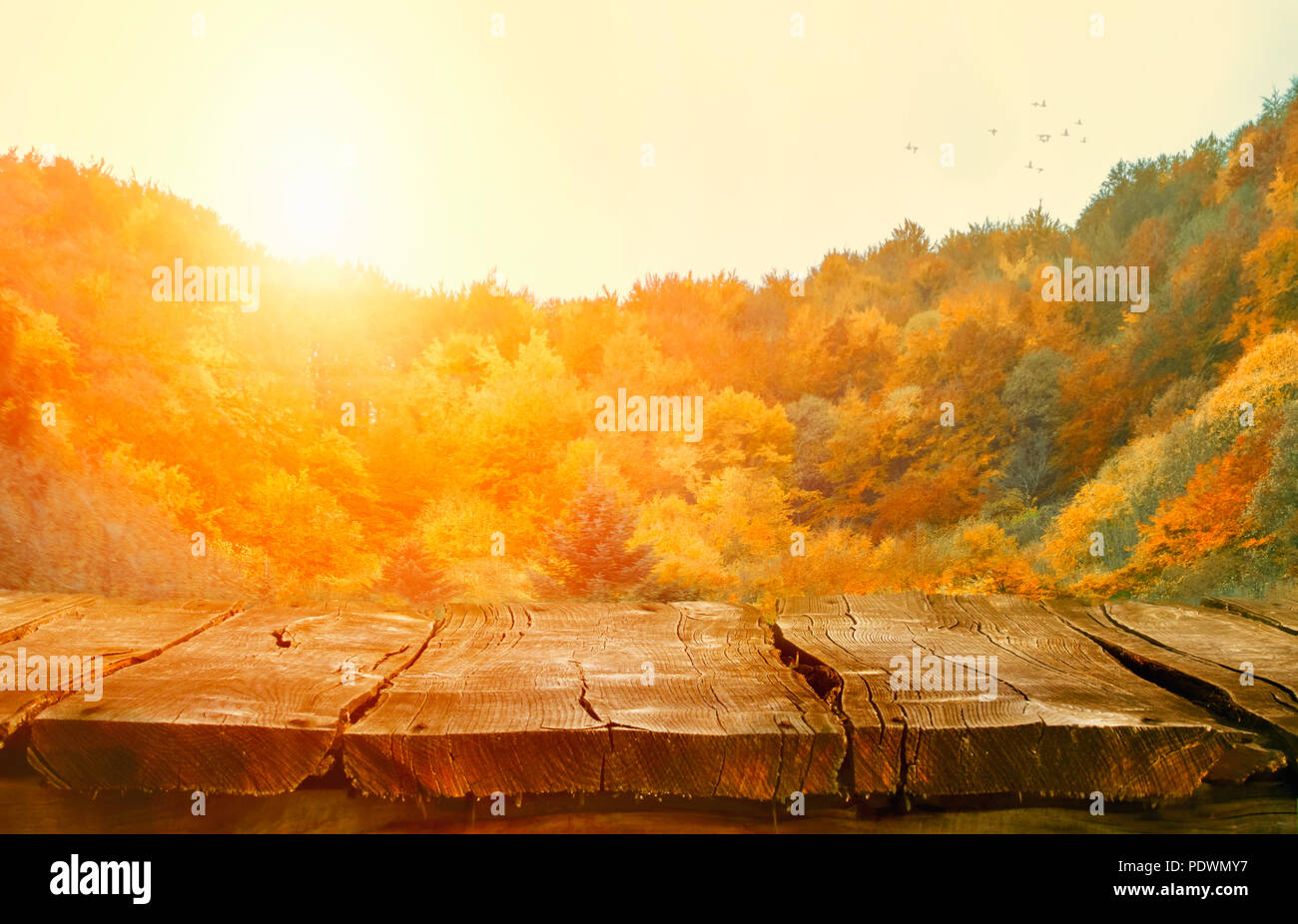 autumn background nature tabletop with falling leaves autumn table
