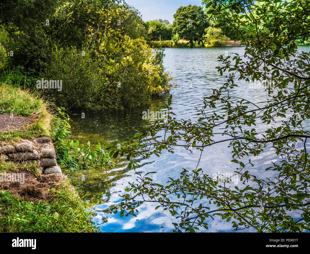 A view of the lake at Neigh Bridge Country Park in Gloucestershire. - Stock Image