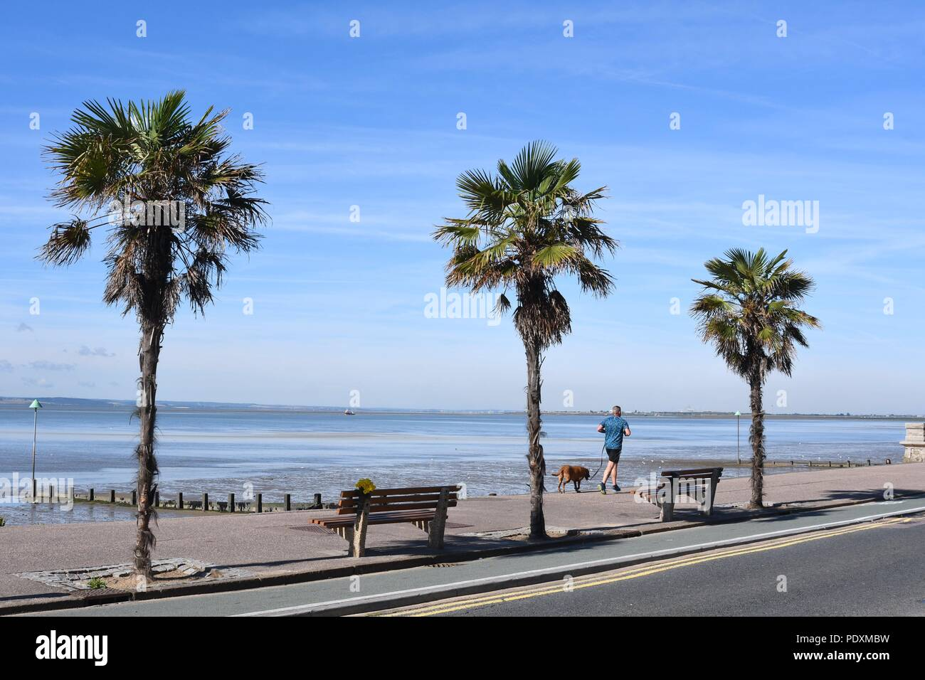 Southend On Sea Es Uk 11th August 2018 Uk Weather A Warm Start To The Day In Southend A View Of A Man Jogging With His Dog Along The Sea Front