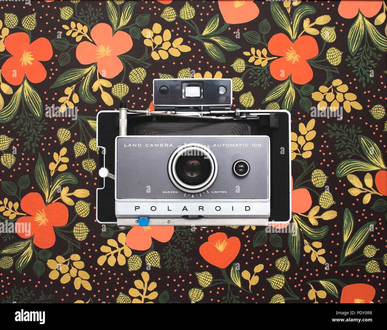Polaroid camera on floral background - Stock Image