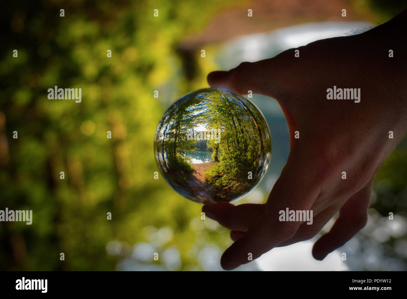 Lensball Photography Crystal Ball - Stock Image