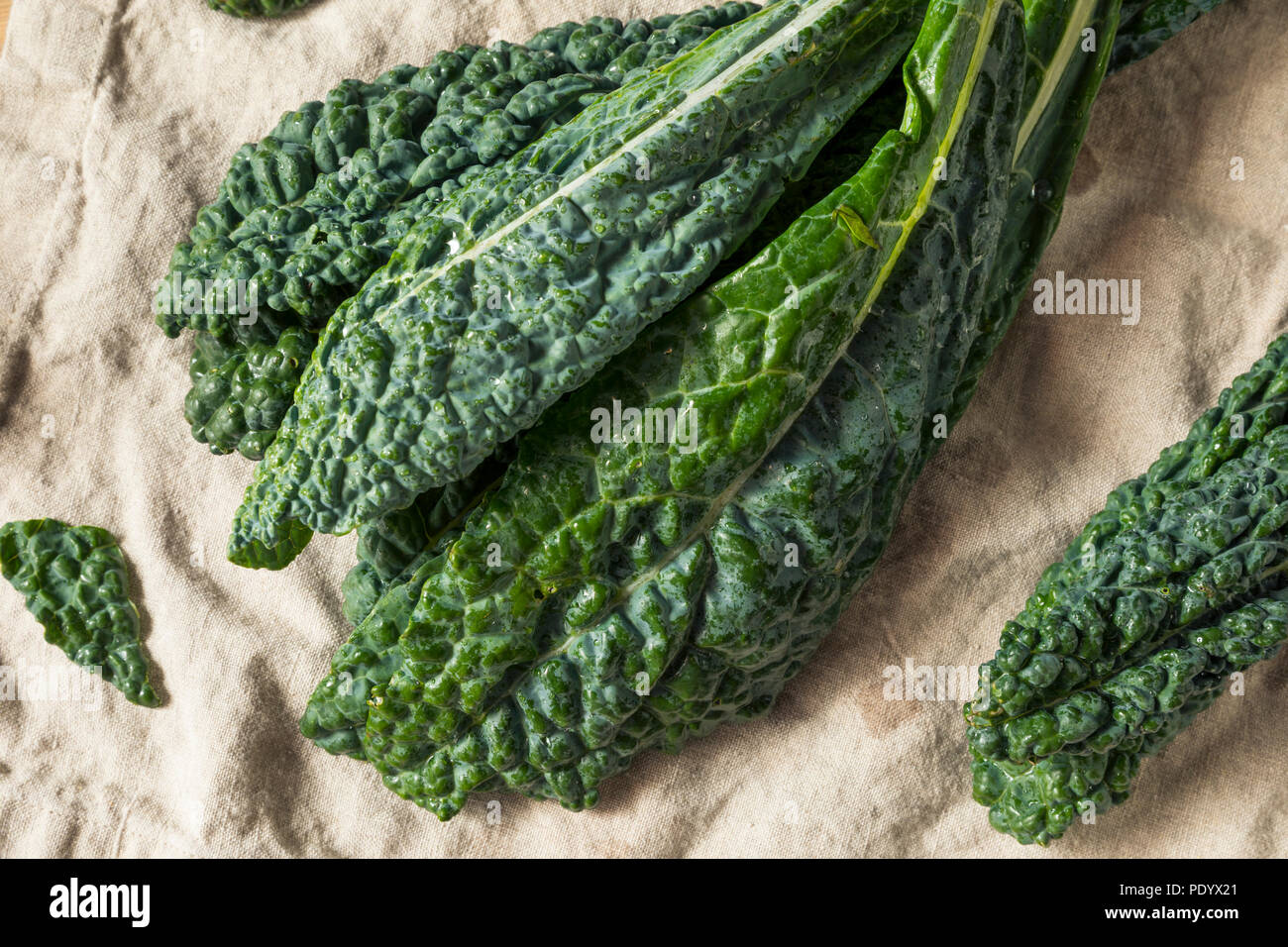 Raw Green Organic Lacinato Kale Ready to Cook - Stock Image