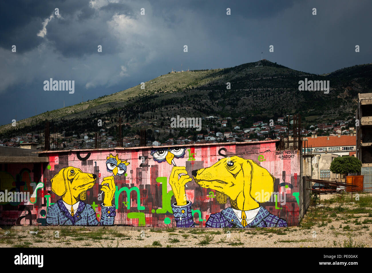 A graffiti showing two anthropomorphous dogs on a disused wall of Mostar downtown ( (Herzegovina-Neretva, Bosnia-Herzegovina). Stock Photo