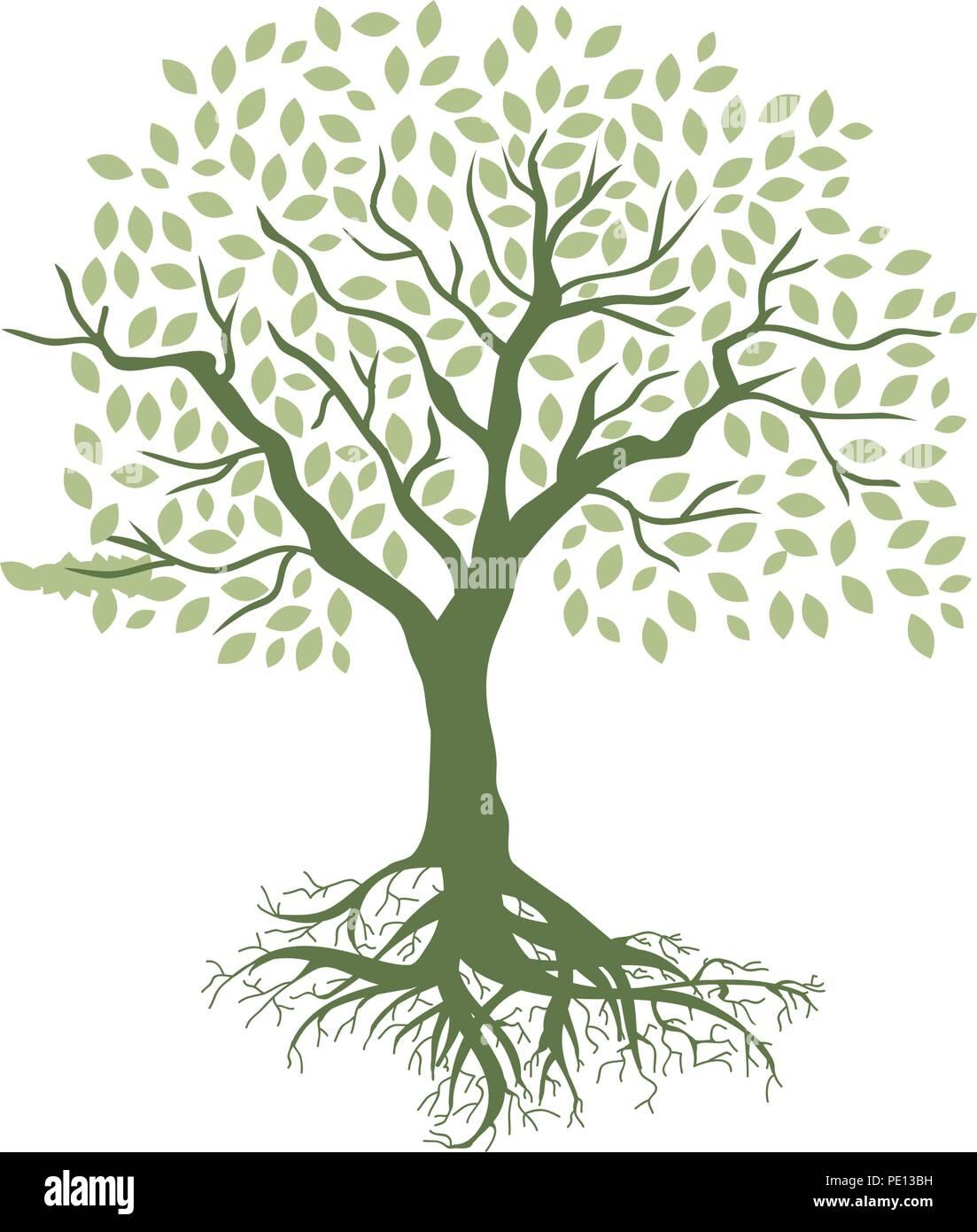 tree of life stock vector art illustration vector image