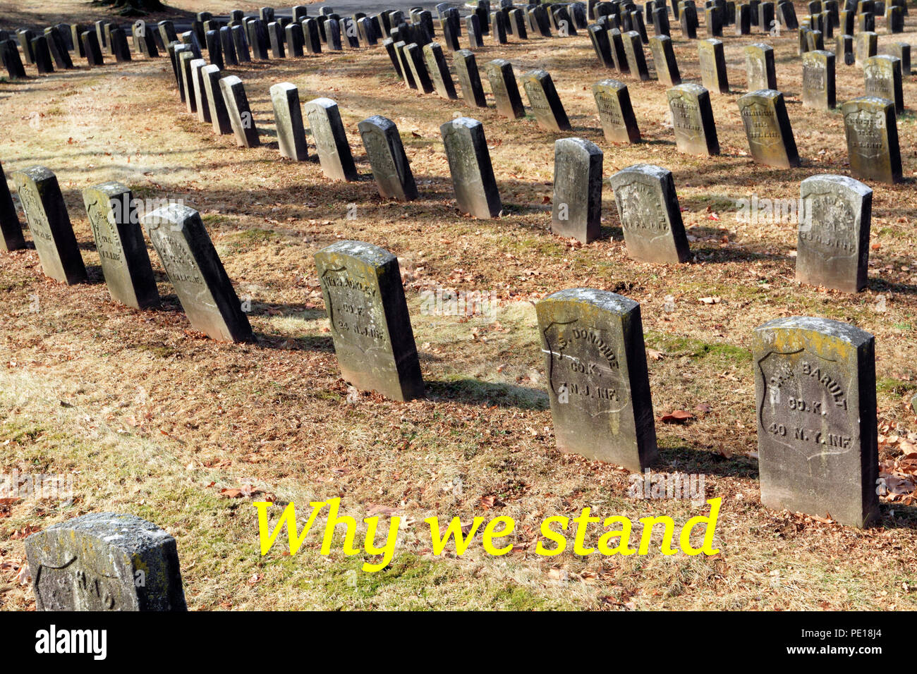 Why We Stand. Commentary on NFL football player kneeling during the National Anthem, USA - Stock Image