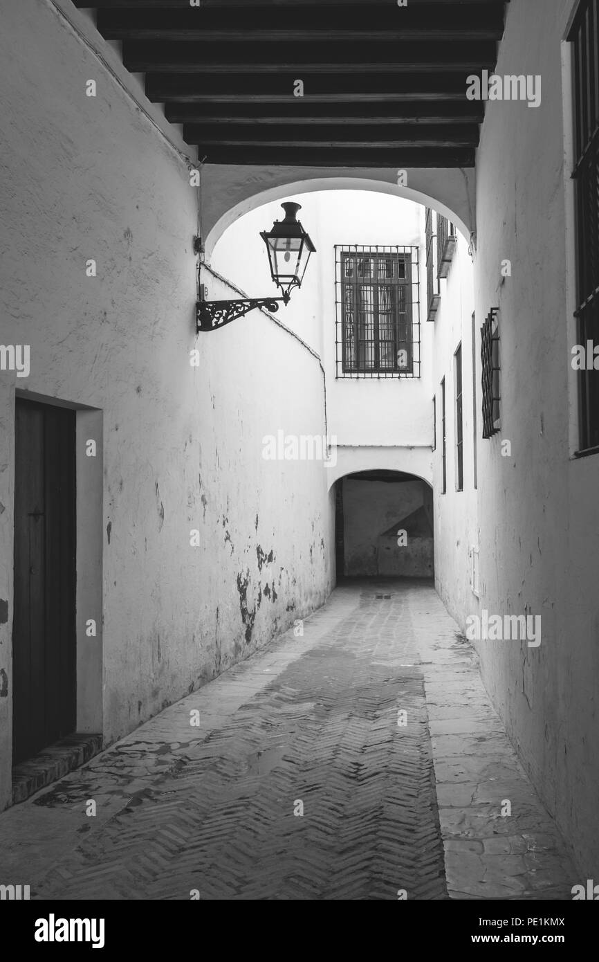 Monochrome of a street in the Jewish quarter (Juderia) in the Santa Cruz district in the Spanish city of Seville, Andalusia, Spain Stock Photo