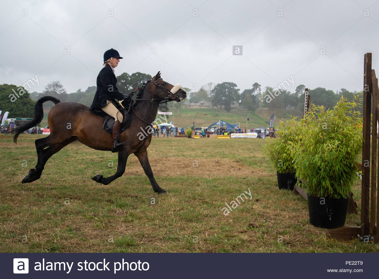 Ellingham, Ringwood, New Forest, Hampshire, England, UK, 11th August 2018. A hunt horse and rider look apprehensive as they approach to a fence at the annual Ellingham and Ringwood Agricultural Society Show in the rural west of the county. Credit: Paul Biggins/Alamy Live News - Stock Image