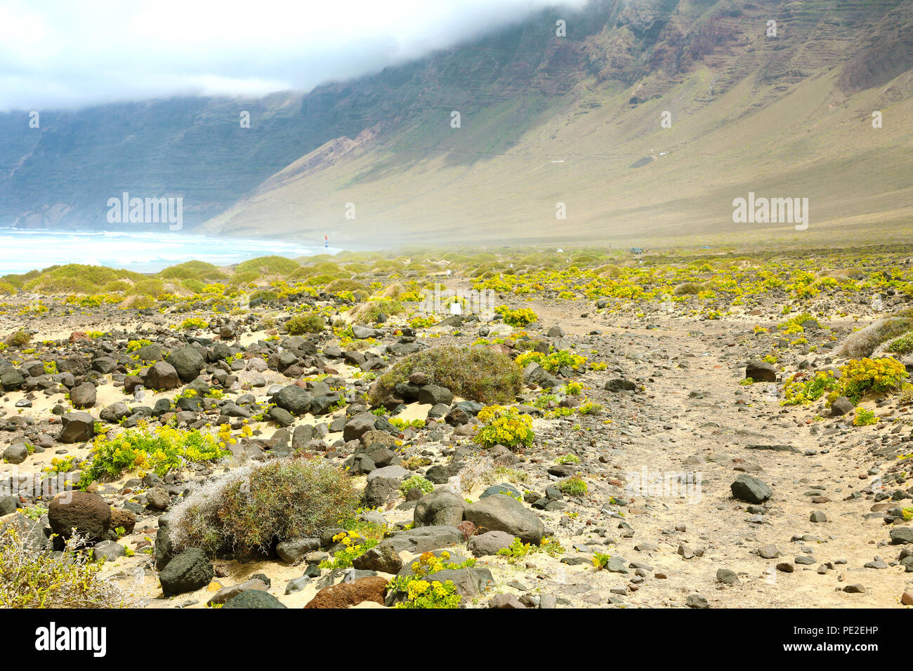 Fabulous enchanted landscape on Lanzarote Island with stone and green yellow vegetation with Atlantic Ocean and misty mountain on the background - Stock Image