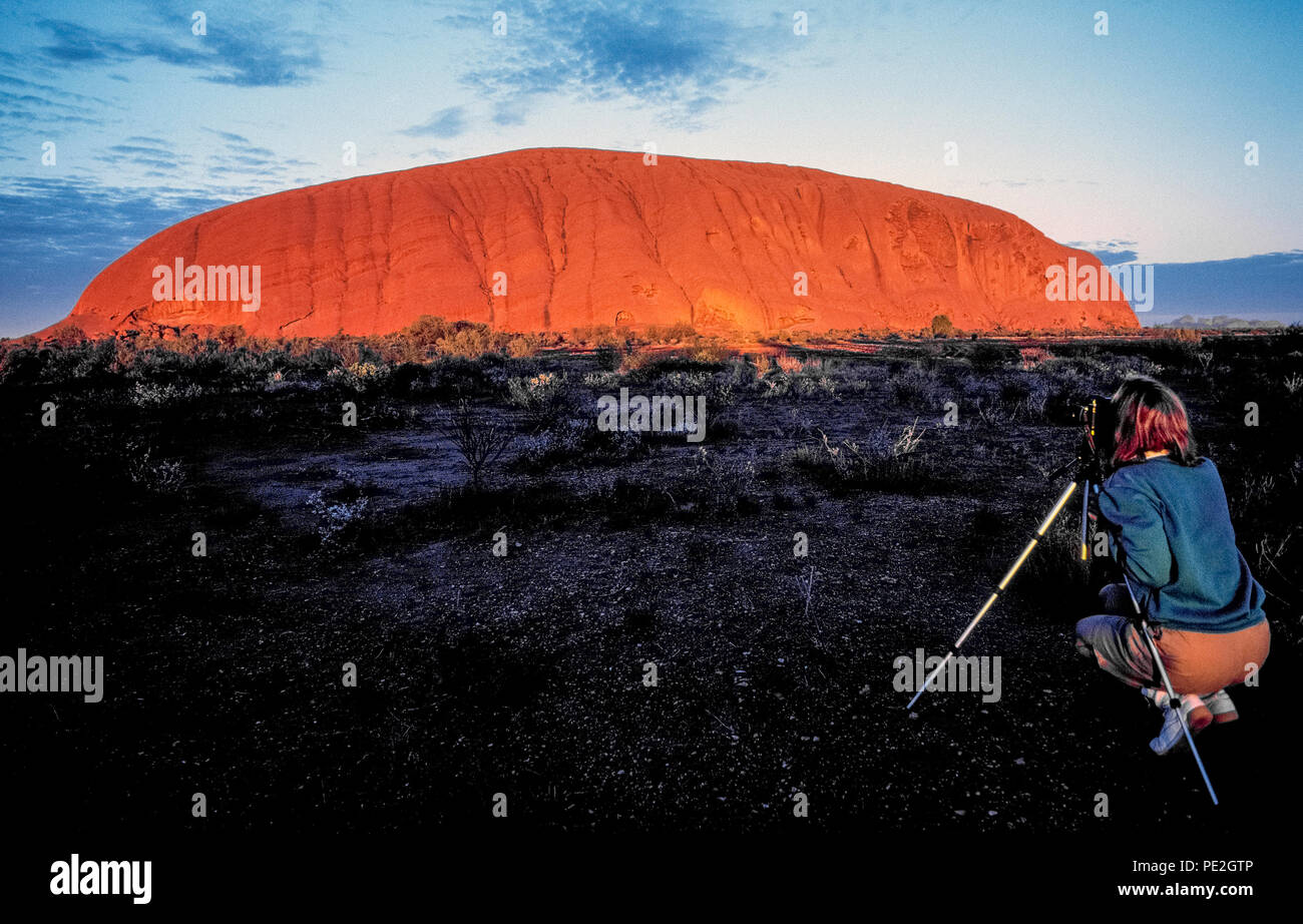 a female visitor photographs sunrise on uluru that causes the terracotta colored surface of this world famous sandstone monolith to appear in flaming red light amid the outback scrublands of the northern territory in https www alamy com a female visitor photographs sunrise on uluru that causes the terracotta colored surface of this world famous sandstone monolith to appear in flaming red light amid the outback scrublands of the northern territory in australia also known as ayers rock the massive landmark rises about 350 meters 1148 feet above ground and covers 86 square kilometers 332 square miles in uluru kata tjuta national park it is a sacred place for the areas indigenous aboriginal tribe the anangu who named the ancient rock uluru meaning earth mother image215186742 html