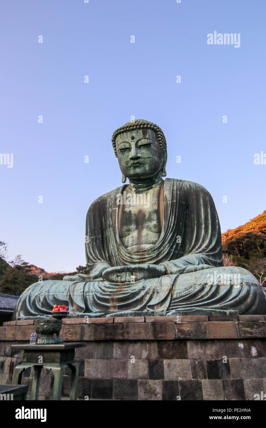 The Great Buddha of Kamakura. A large buddha statue at the Kōtoku-in in Kamakura, Kanagawa Prefecture, Japan. - Stock Image