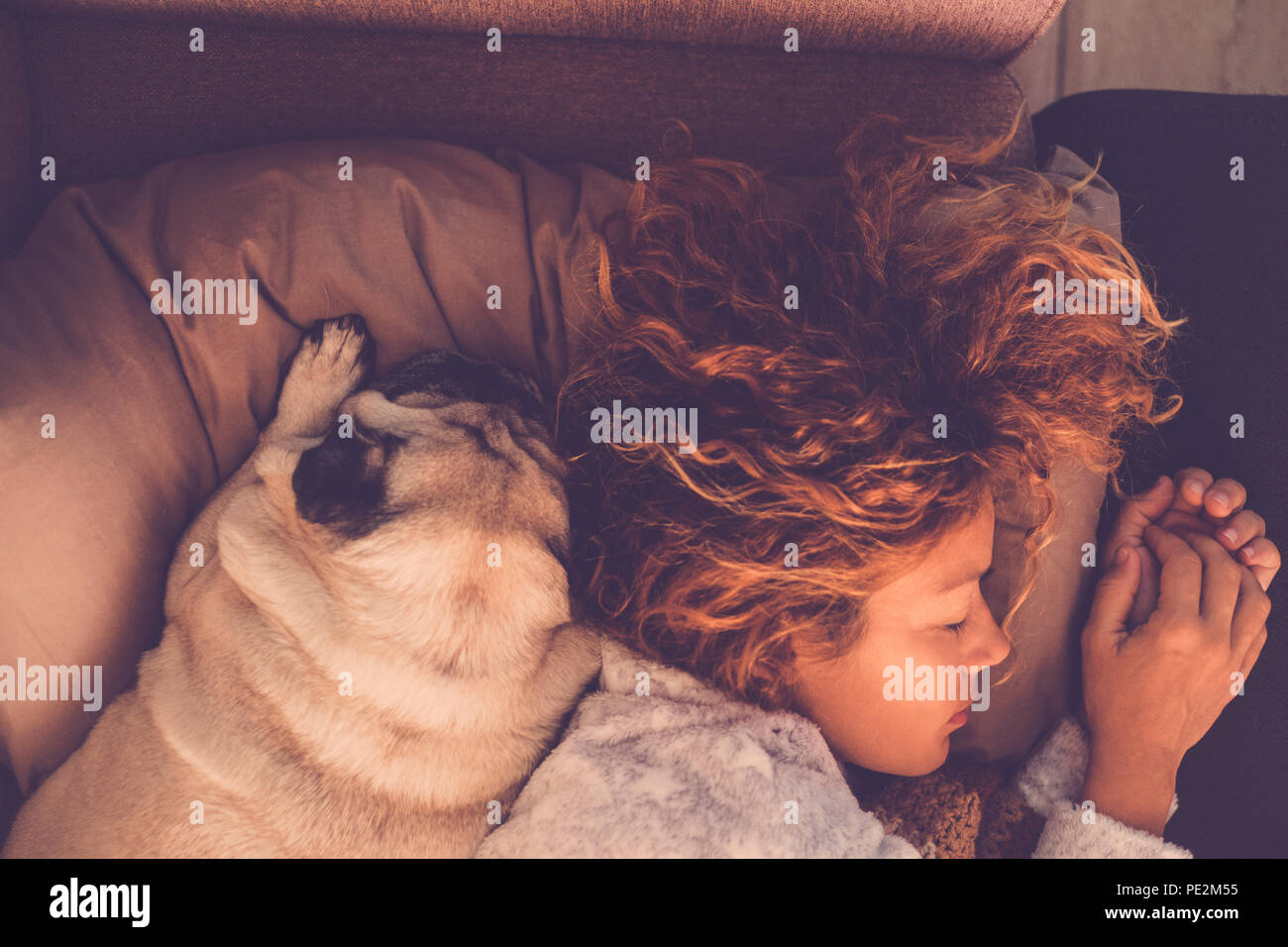 friendship concepts for 40s woman sleeping with her best firends pug dog at home. Both on the pillow and brown warm tones. Dreaming together. Love and - Stock Image