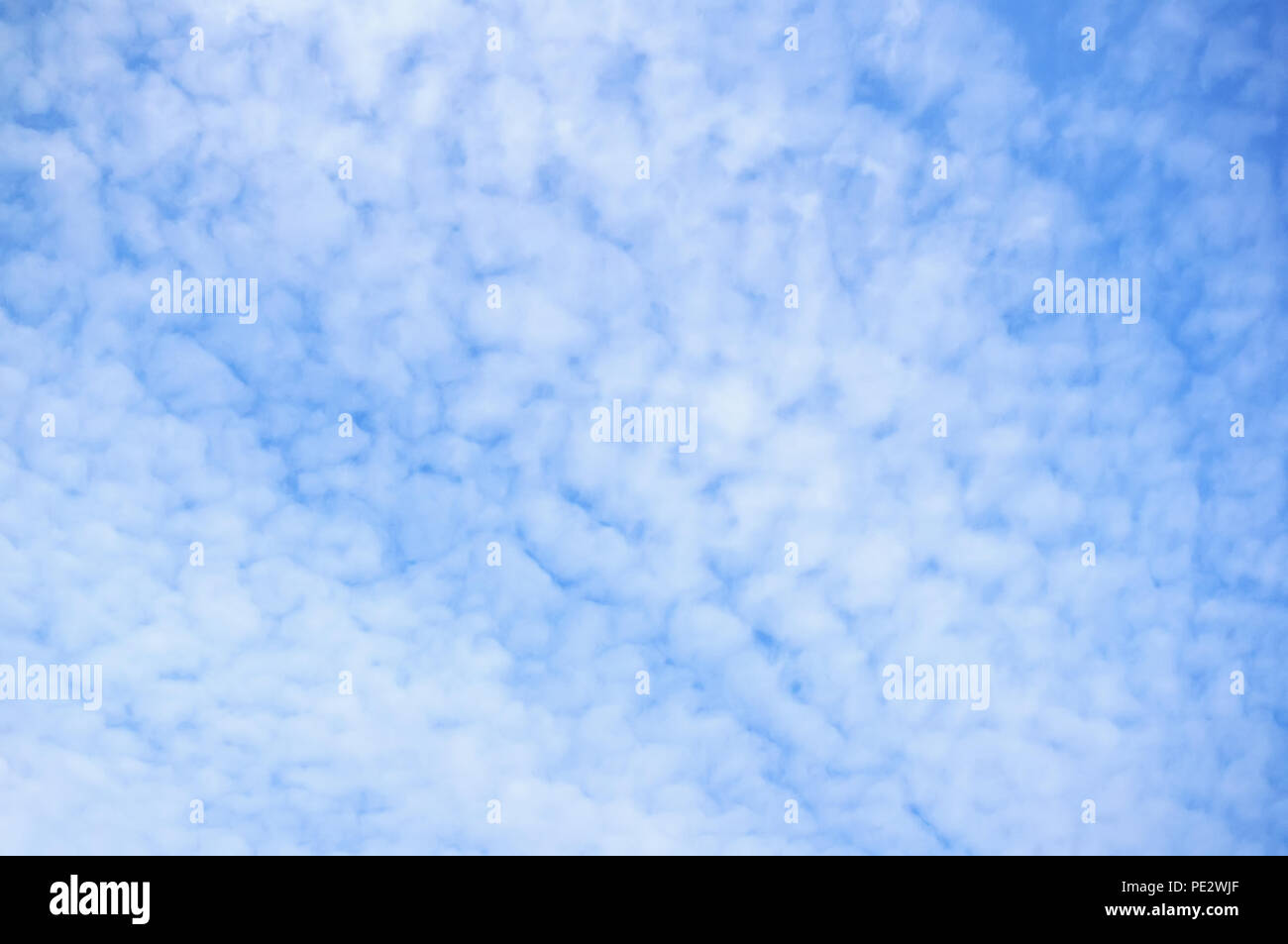 Beautiful small unusual white fluffy clouds. Background - Stock Image