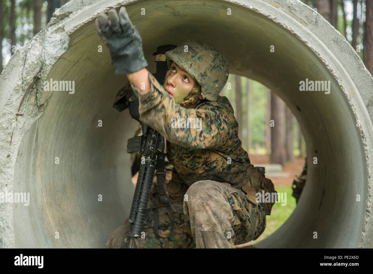 Rct. Marshall T. Darling, Platoon 1084, Charlie Company, 1st Recruit Training Battalion, clears a culvert on a combat training course Sept. 22, 2015, on Parris Island, S.C. The course is part of Basic Warrior Training, which focuses on basic field-related skills all Marines must know. These skills will be broadened during follow-on training at Camp Lejeune, N.C. Darling, 18, from Hamden, Conn., is scheduled to graduate Oct. 16, 2015. Parris Island has been the site of Marine Corps recruit training since Nov. 1, 1915. Today, approximately 20,000 recruits come to Parris Island annually for the c - Stock Image