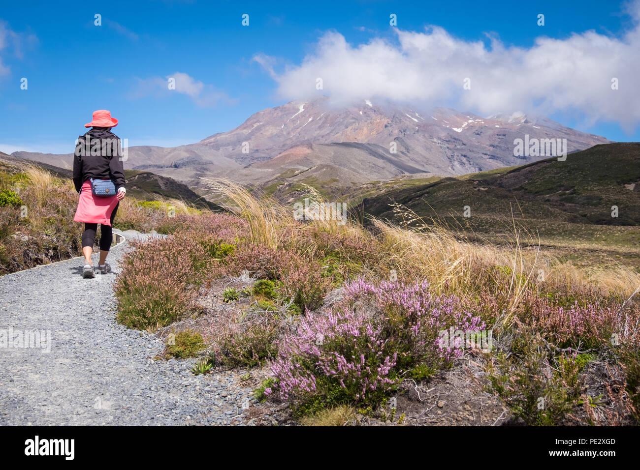 A woman walking towards Mt Ruapehu in the Tongariro National Park - Stock Image
