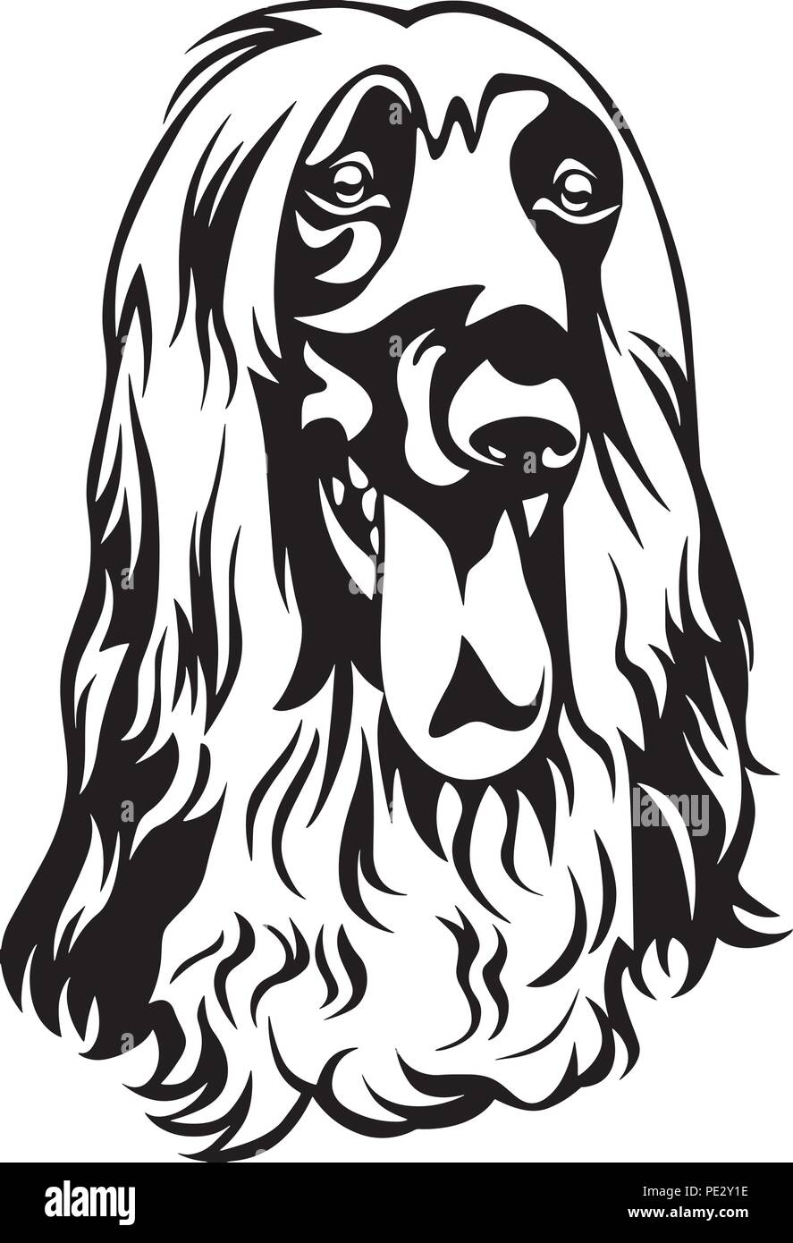 Afghan Hound Breed Pet Puppy Isolated Head Face Stock Vector