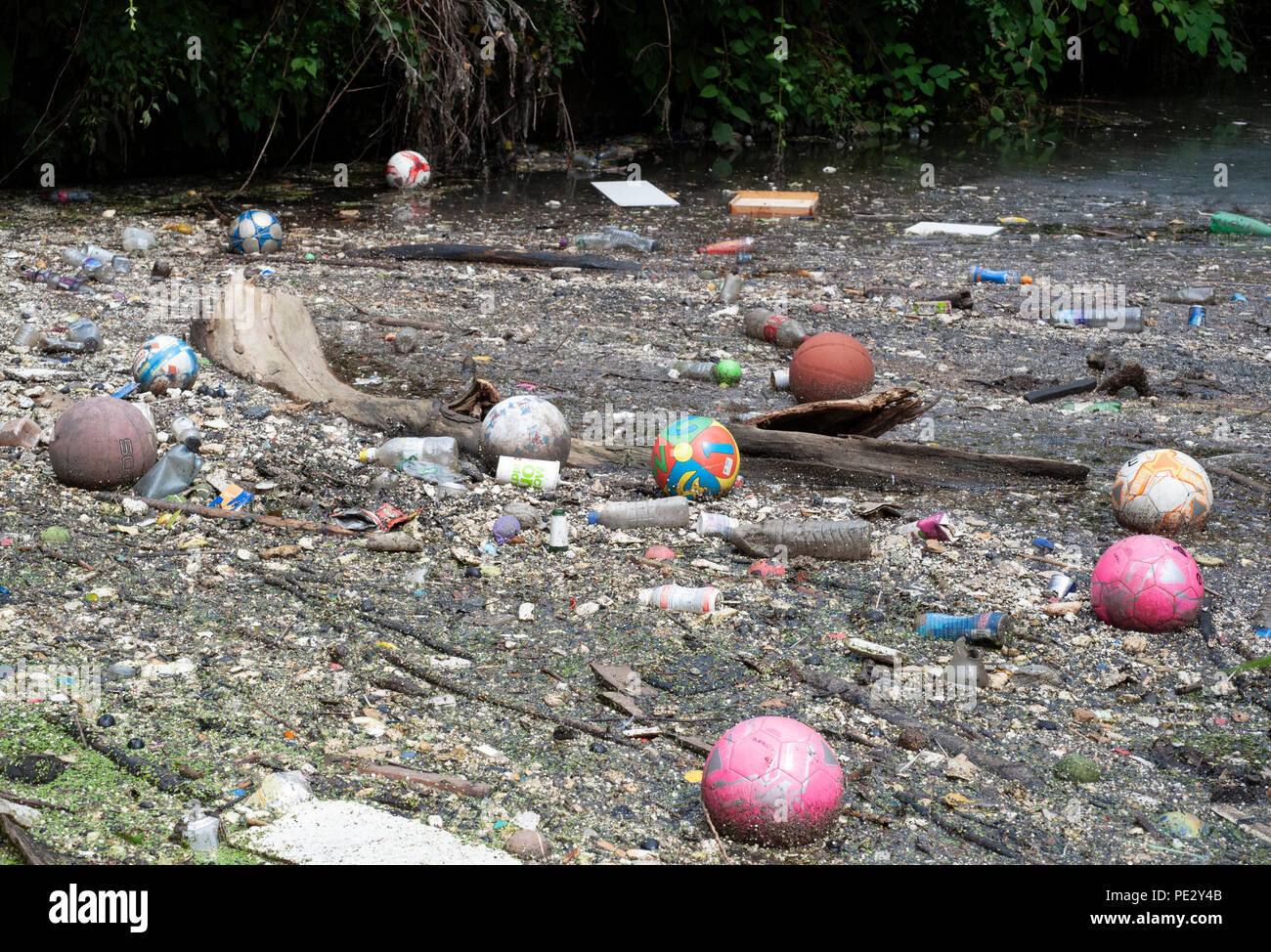 River pollution collected near a pollution grate,River Brent, near Brent Reservoir, also known as Welsh Harp Reservoir, Brent, London, United Kingdom - Stock Image