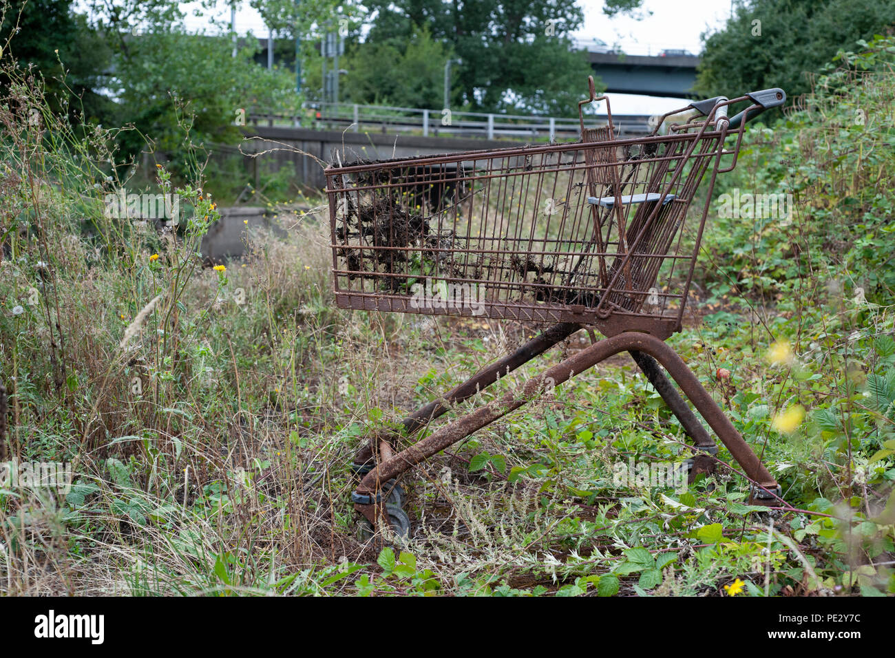 Dumped supermarket trolley, River Brent, near Brent Reservoir, Brent, London, United Kingdom Stock Photo