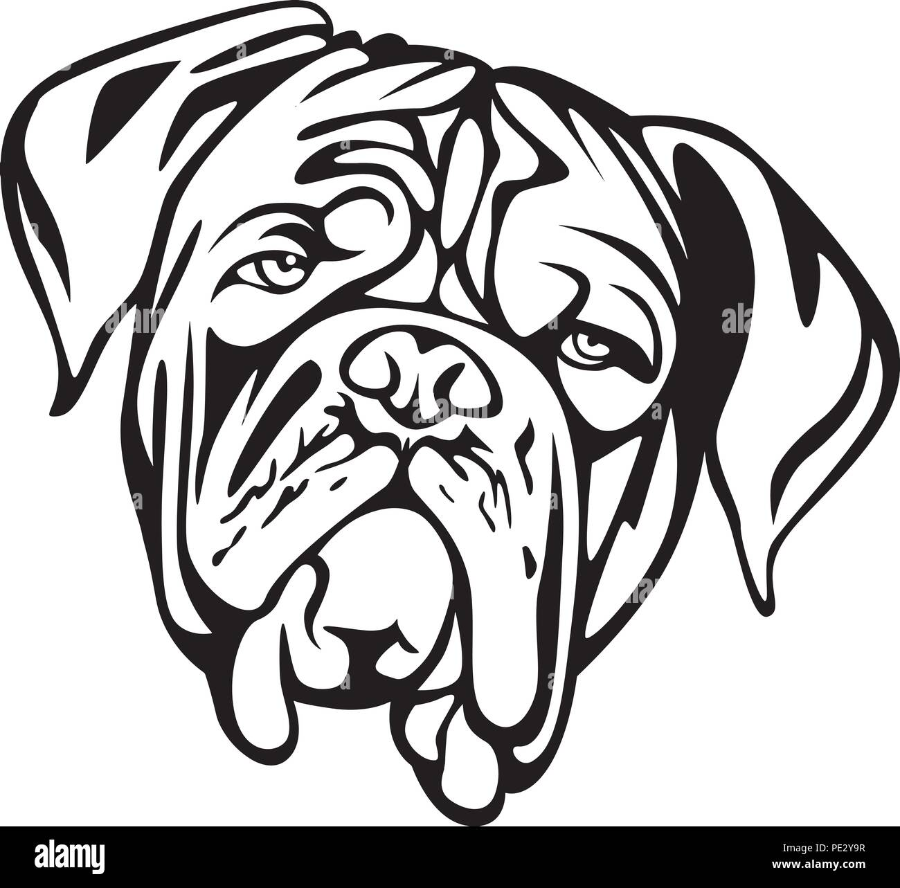 Dogue de Bordeaux Breed Pet Puppy Isolated Head Face Stock Vector
