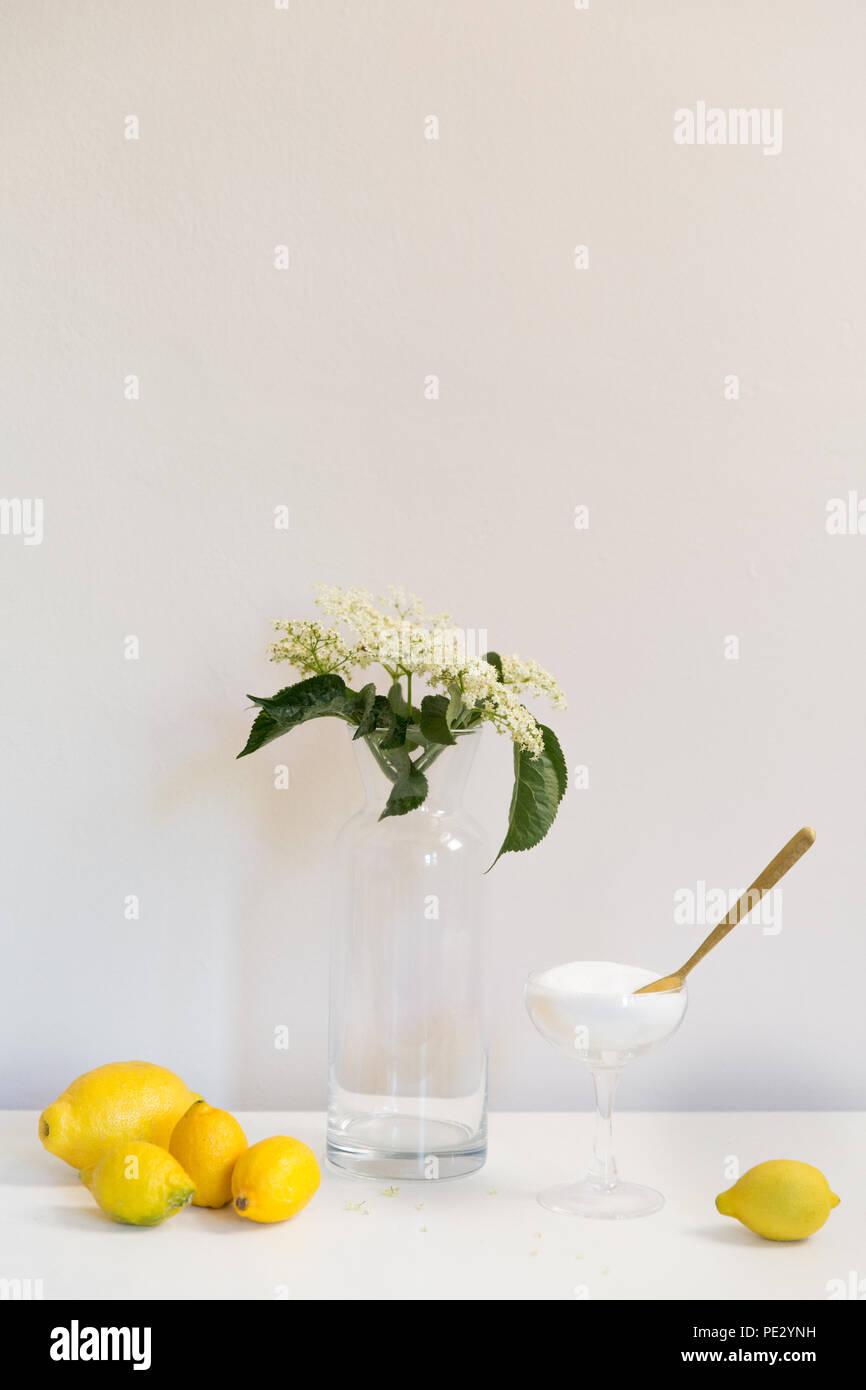 The ingredients of Elderflower cordial (wine, syrup, sparkling wine, champagne, fizz) - lemons, sugar and Elderflowers - Stock Image