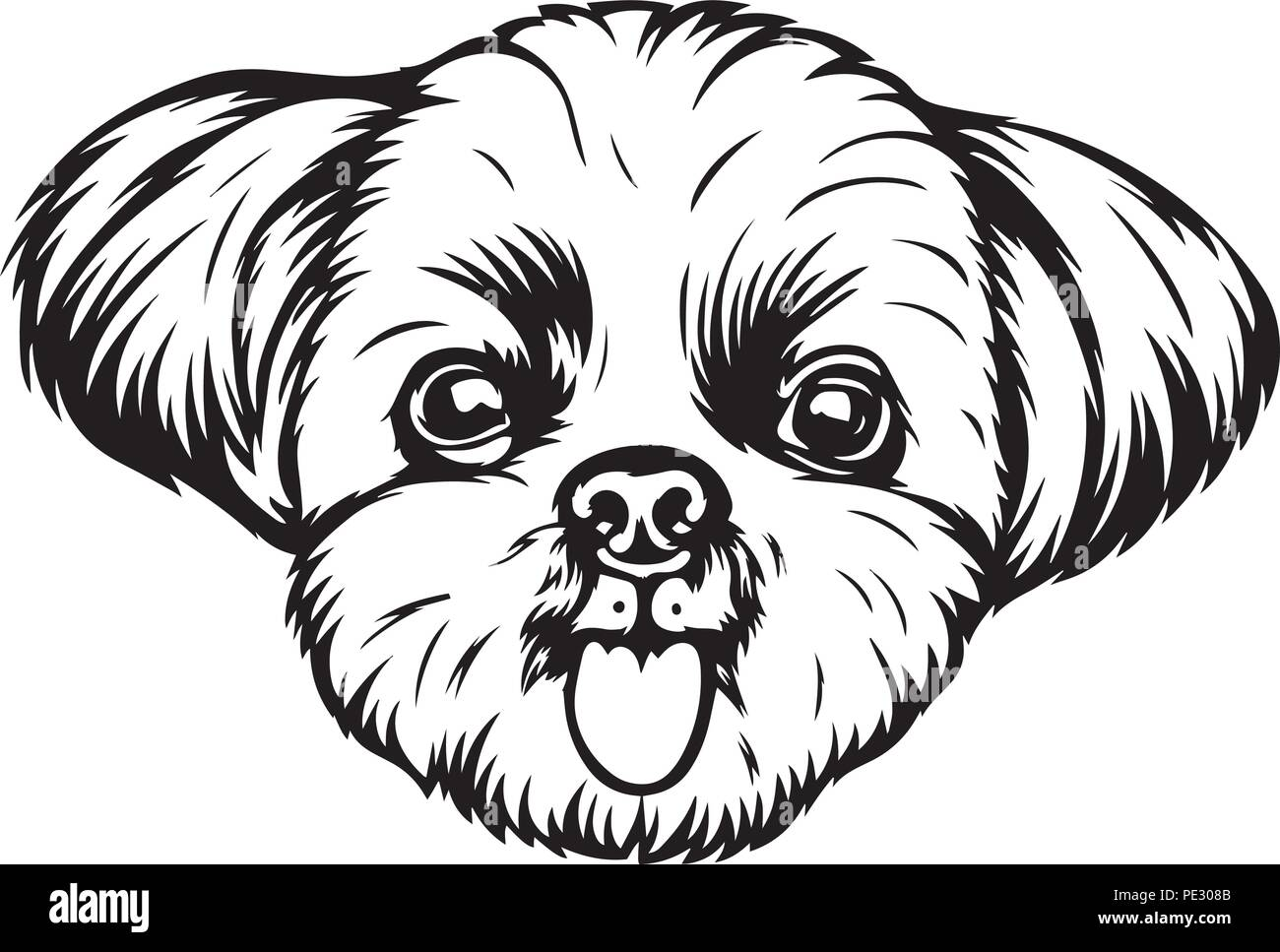 Shih Tzu Dog Breed Pet Puppy Isolated Head Face Stock Vector Image