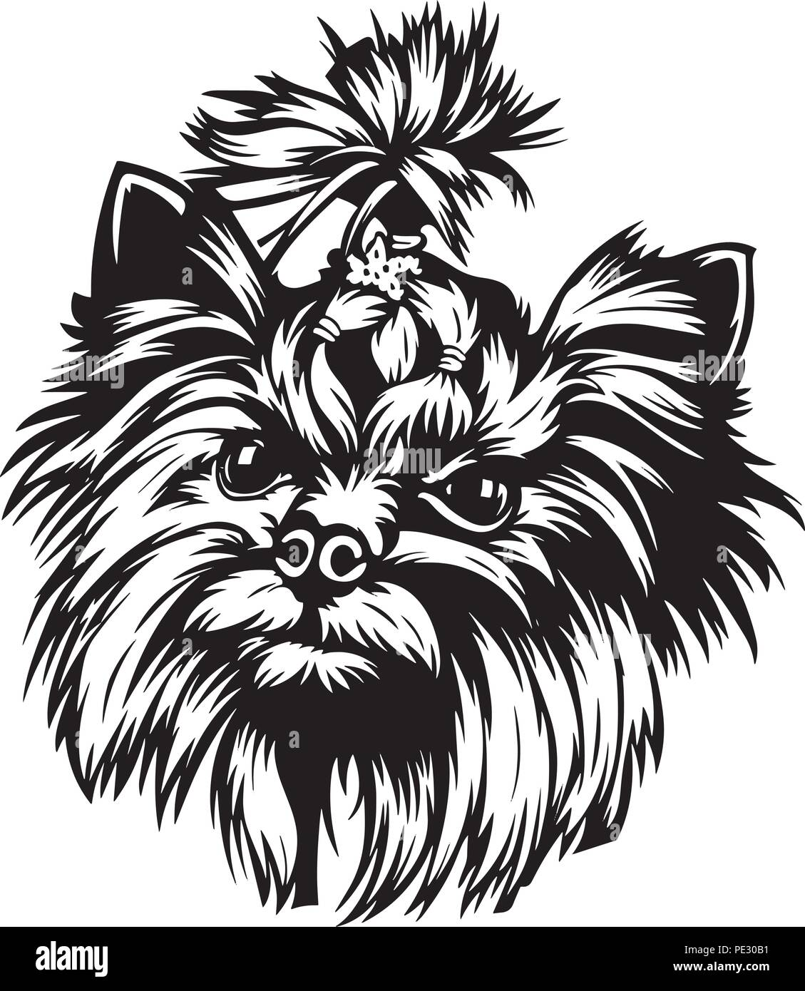 Yorkshire Terrier Yorkie Dog Breed Pet Puppy Isolated Head Face Stock Vector