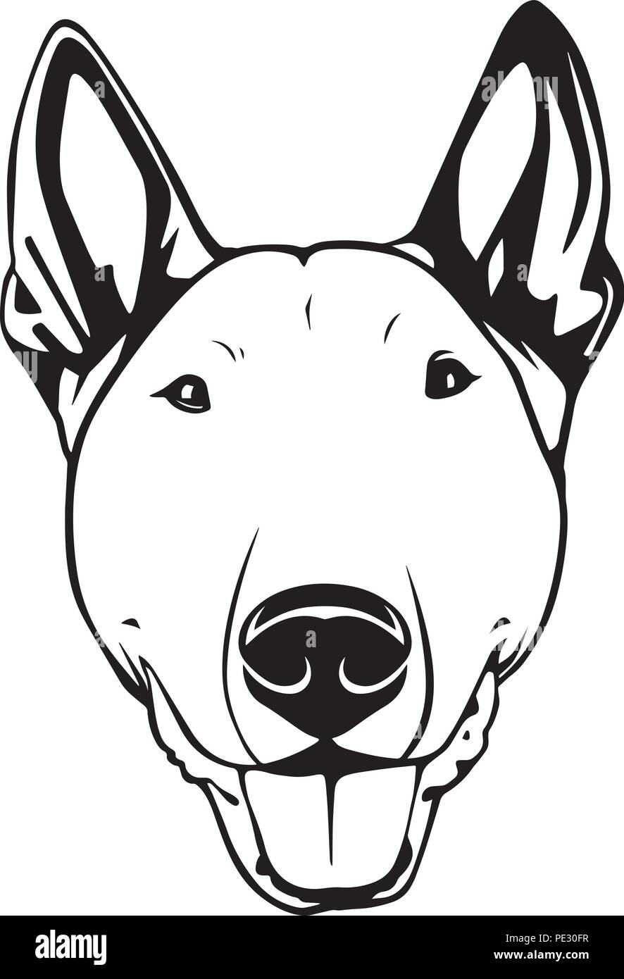 Bull Terrier Dog Breed Pet Puppy Isolated Head Face Stock Vector