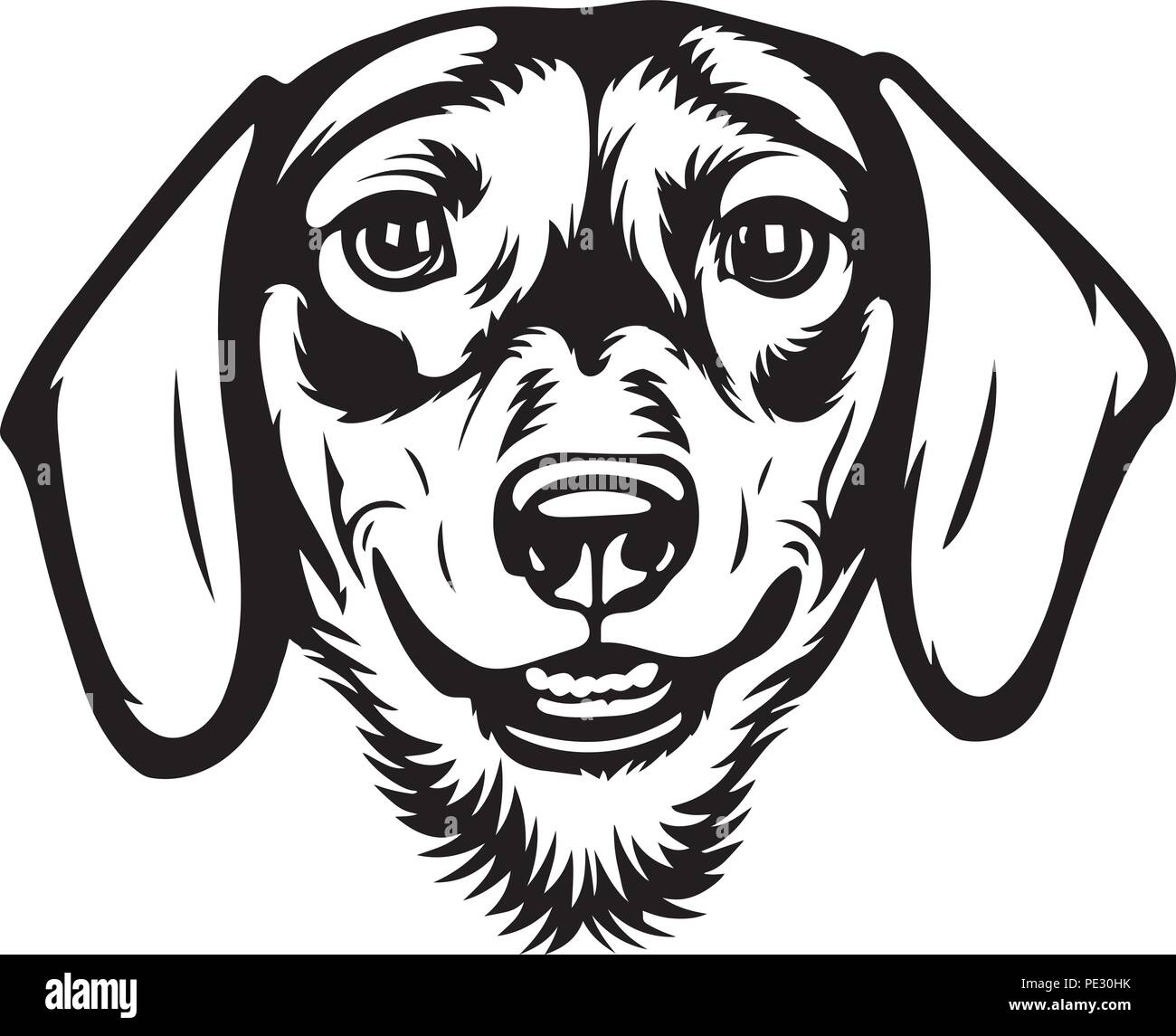 Dachshund Dog Breed Pet Puppy Isolated Head Face Stock Vector