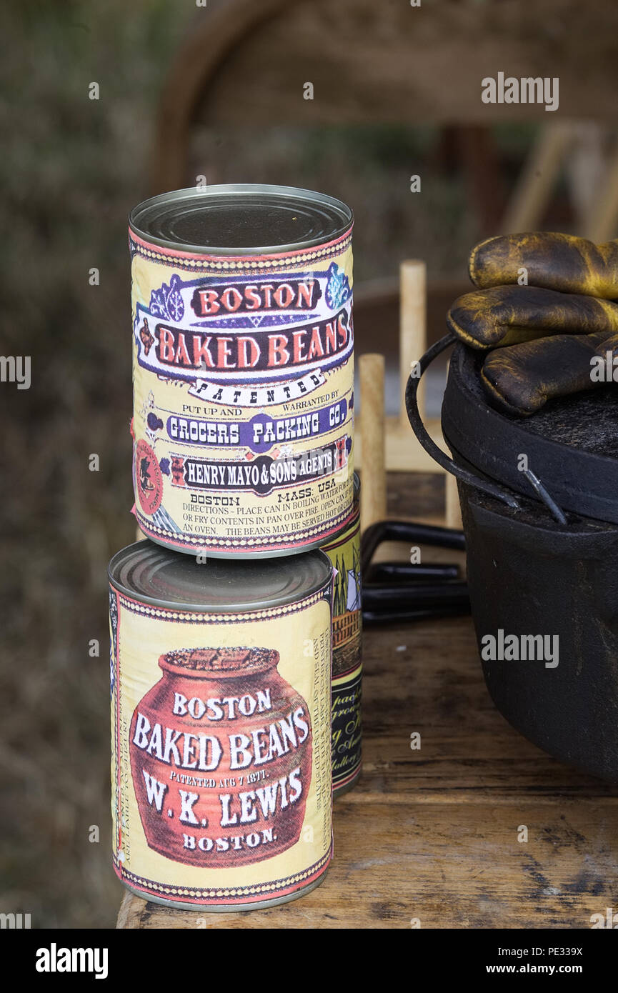Boston baked beans - Stock Image