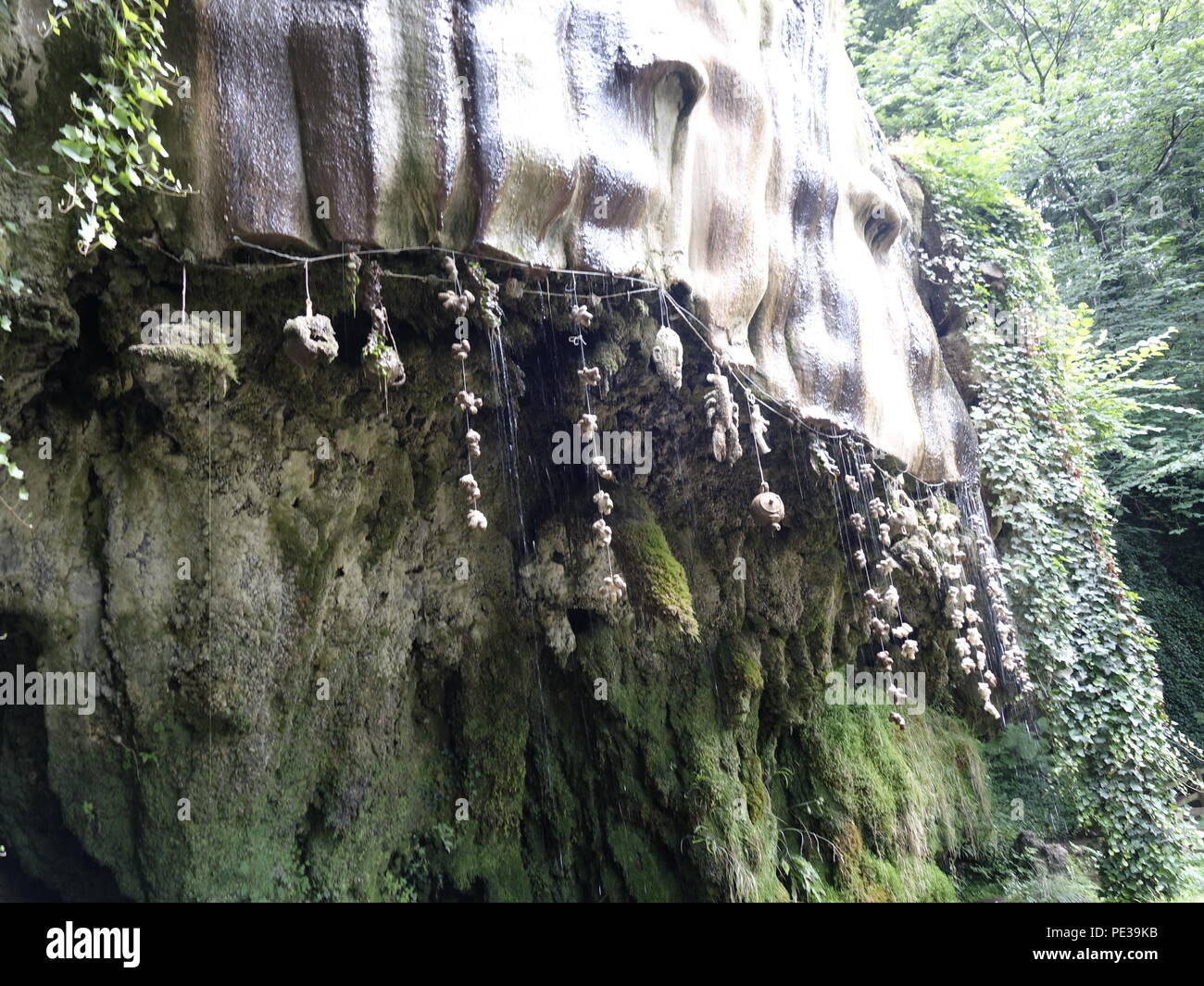 Photo from Mother Shipton's cave in Knaresborough - Stock Image