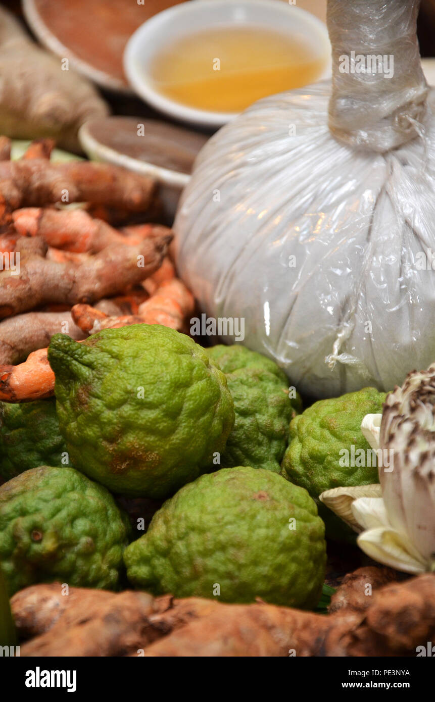 Cassumunar ginger, Bengal root, oil and Herbal Compress Ball - Stock Image