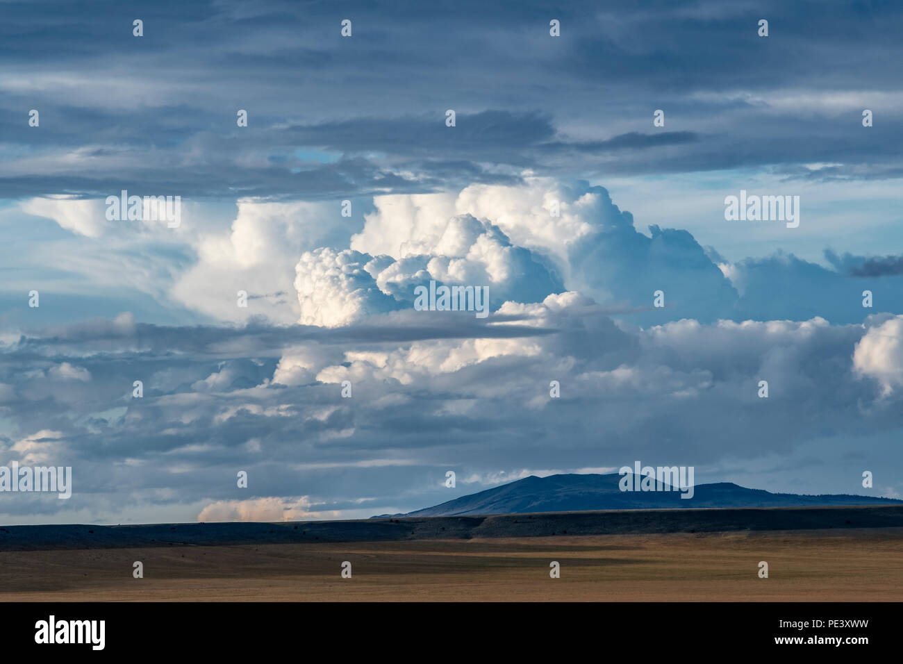 Cumulonimbus clouds. Mora County, NM, USA, by Dominique Braud/Dembinsky Photo Assoc Stock Photo