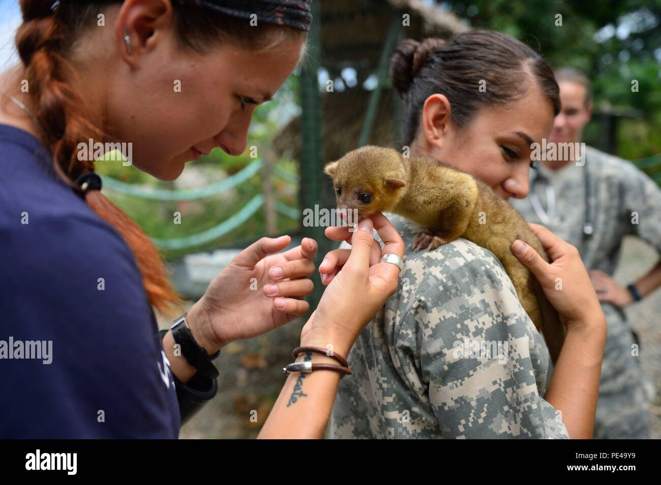150904-N-AT101-406 SANTA FE COLON, Honduras (Sept. 4, 2015) A volunteer photographer from the non-governmental organization (NGO) World Vets, left, and Army Spc. Adrianna Maza, a native of San Diego and veterinary technician assigned to the Veterinary Treatment Facility on Joint Base Meyer-Henderson Hall, Va., interact with with a kinkachoo during a subject matter expert exchange  at the Campo Del Mar Park System in support of Continuing Promise 2015 (CP-15). World Vets volunteers are working alongside other NGOs and joint military members during CP-15. Continuing Promise is a U.S. Southern Co - Stock Image