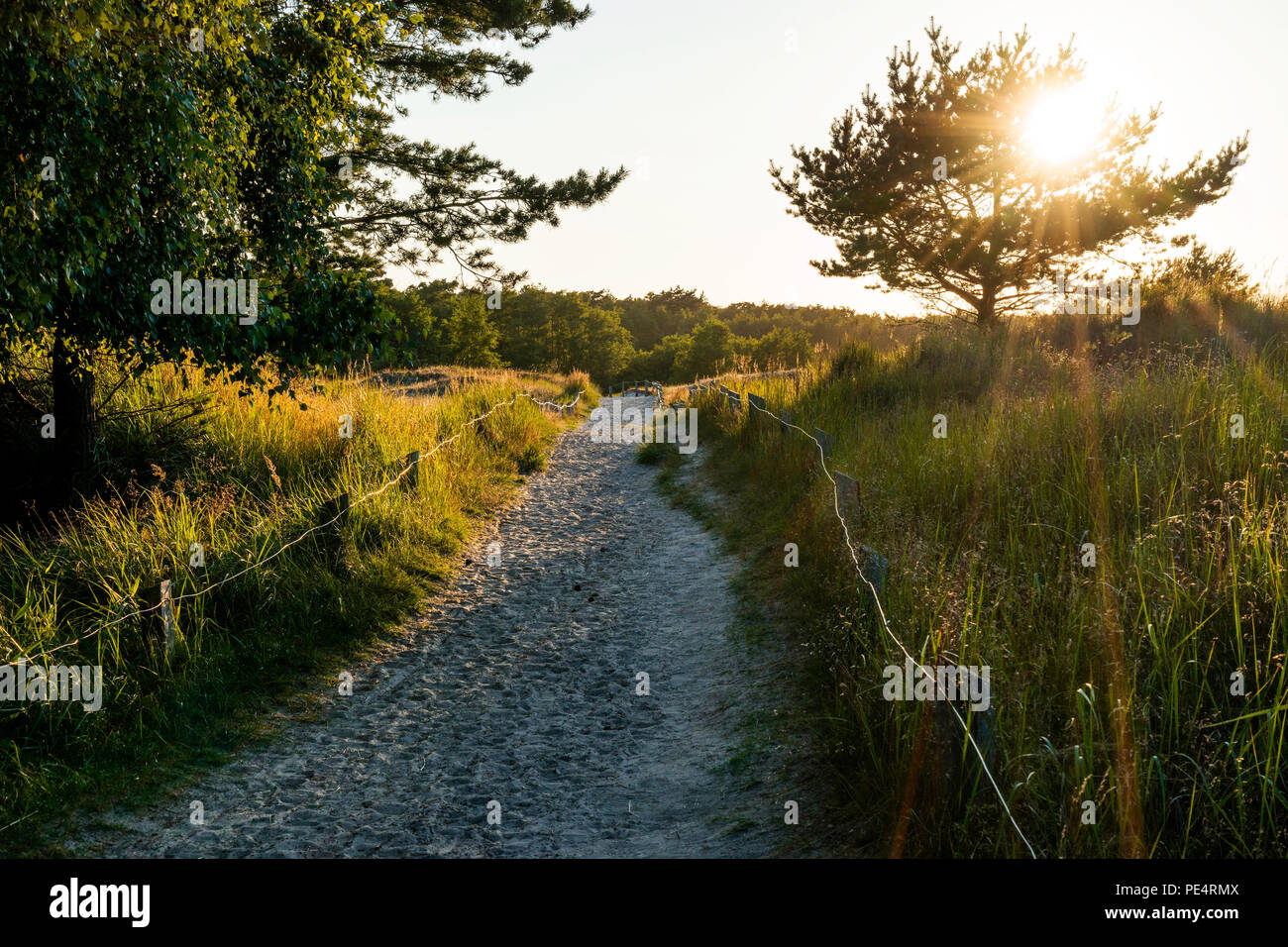 Wandern auf dem DarssŸ - Stock Image