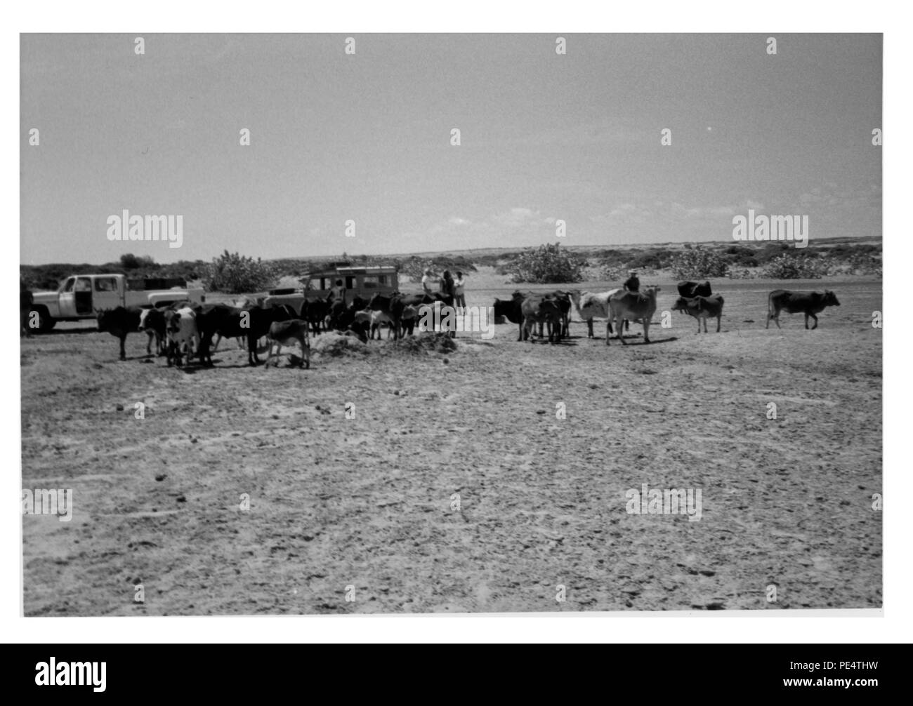 One of the many had dug shallow wells on the coast of Somalia. Most of these wells are dug in dry stream beds near the coast but usually have soft water intrusion in two to three days. The solution is to move a few feet and dig another well. Picture #16. - Stock Image
