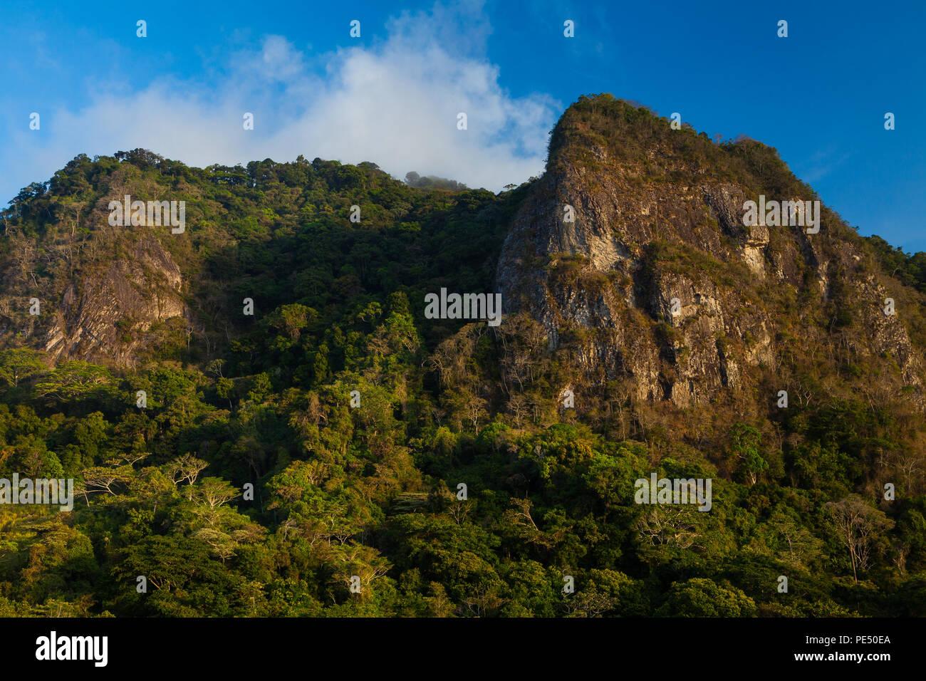Early morning light on the cloudforest and Cerro la Cruz (right) in Altos de Campana national park, Cordillera Central, Republic of Panama. Stock Photo