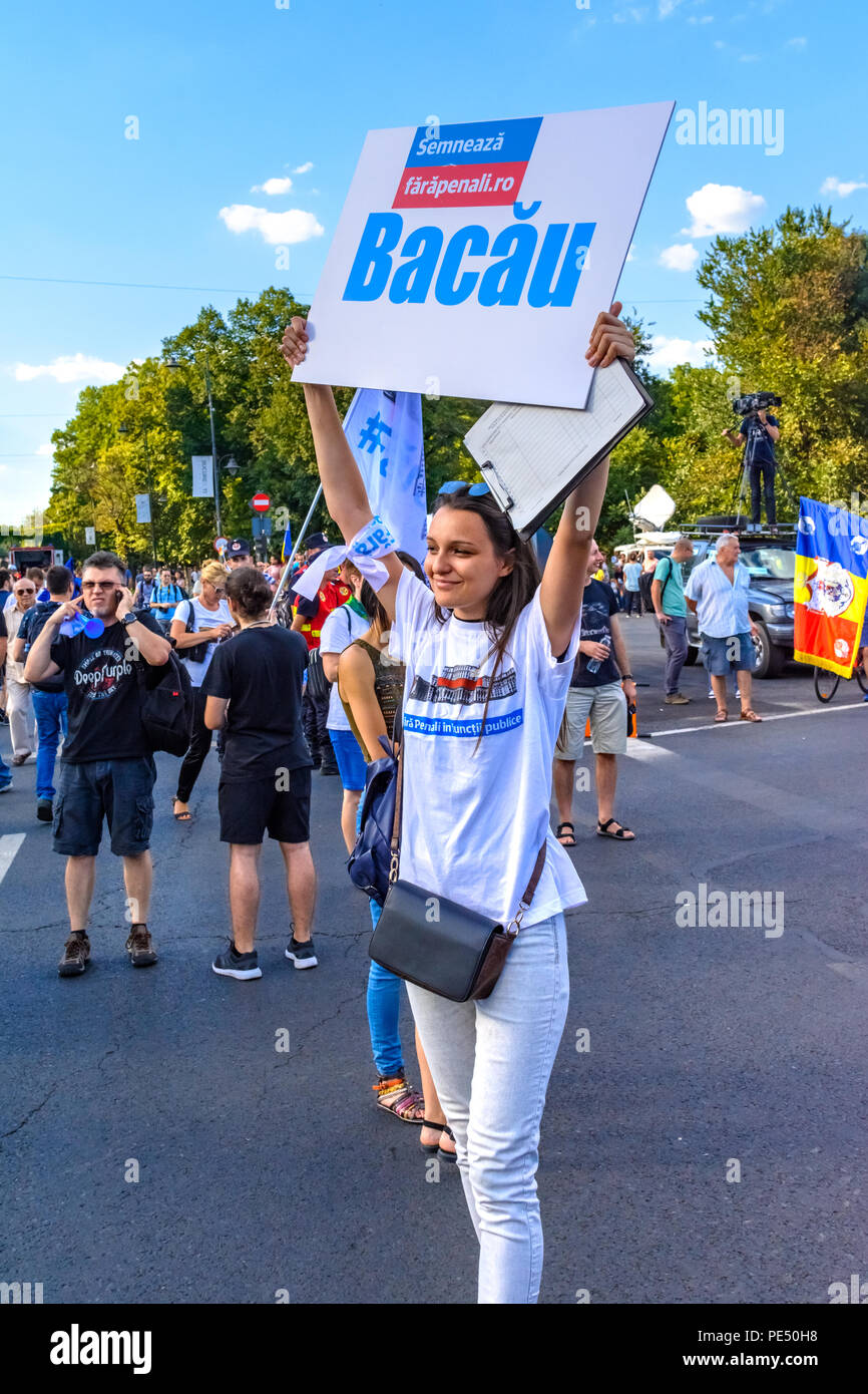Bucharest, Romania - 10 August 2018: Young woman looking for people to sighn a iniative to change the contitution during Diaspora protest against the  - Stock Image