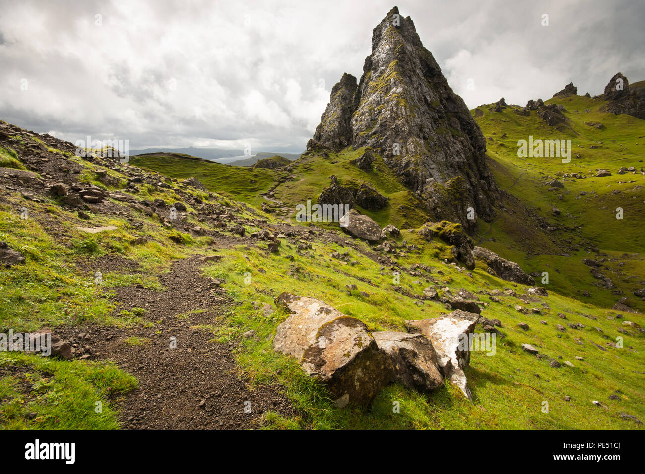 Detail of The Old of Storr - Stock Image