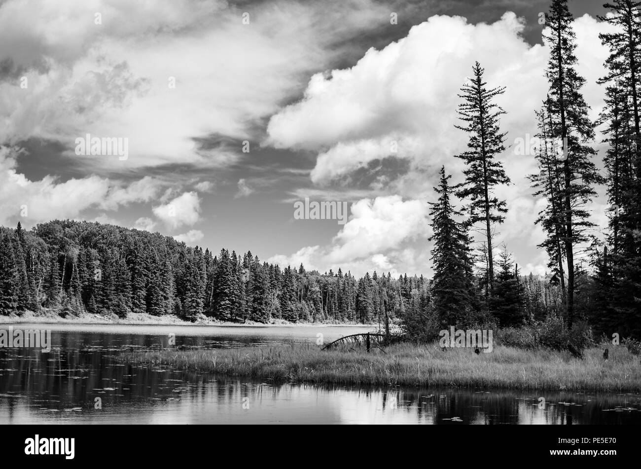 Stark contrast black and white landscape of Hickey Lake, Duck Mountain Provincial Park, Manitoba, Canada - Stock Image