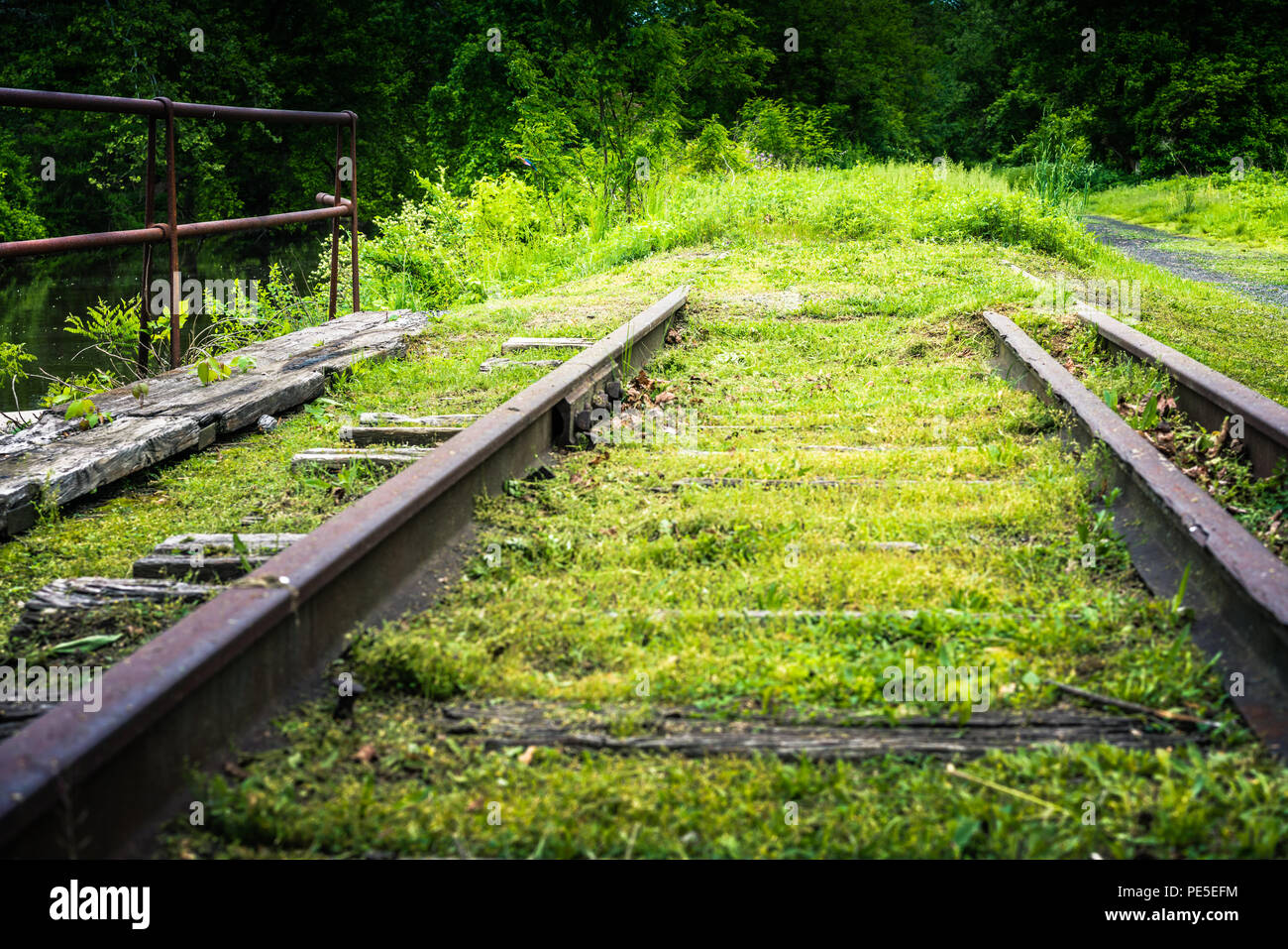 Overgrown, rotten and past their prime leading nowhere. Train tracks vintage. - Stock Image