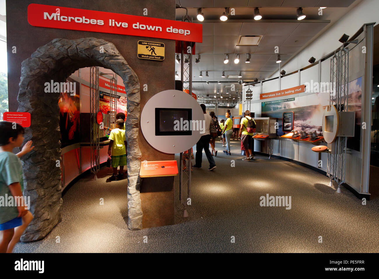 World of Microbes interactive exhibit at the New York Hall of Science - Stock Image