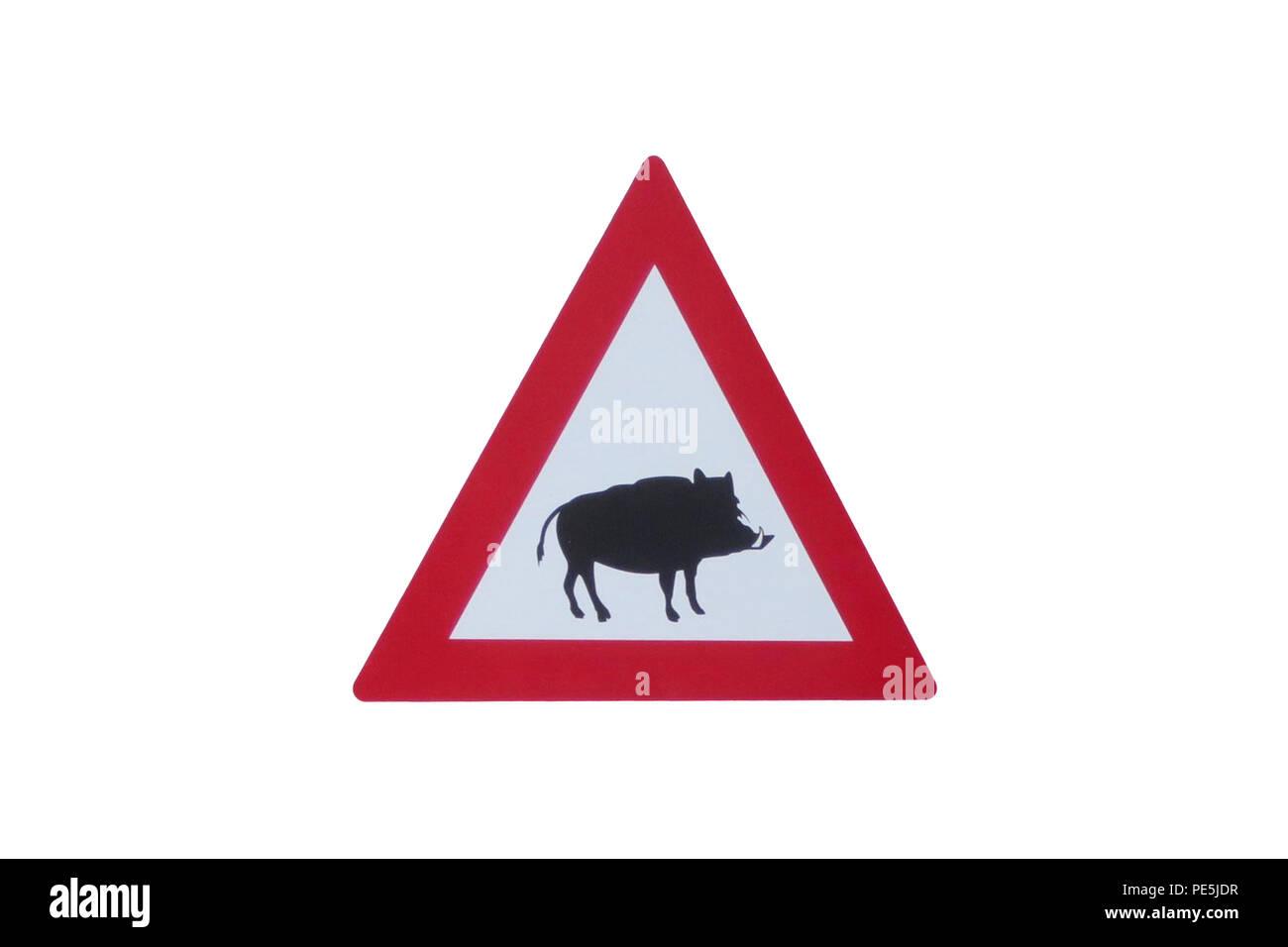 Road Sign - Road Sign - Attention Wildlife - Boar - Wildlife Danger - Stock Image