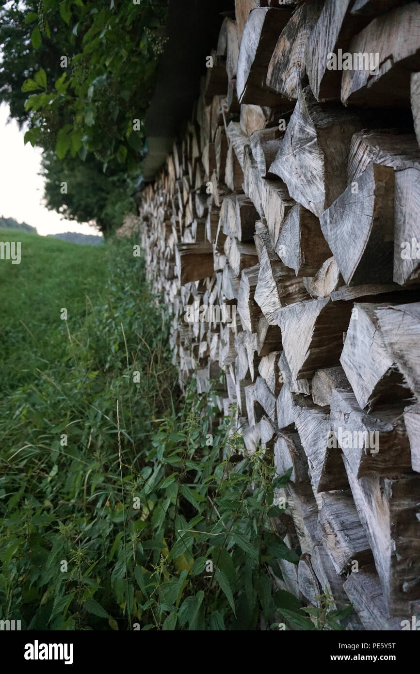 stack of wood at edge of forest - Stock Image