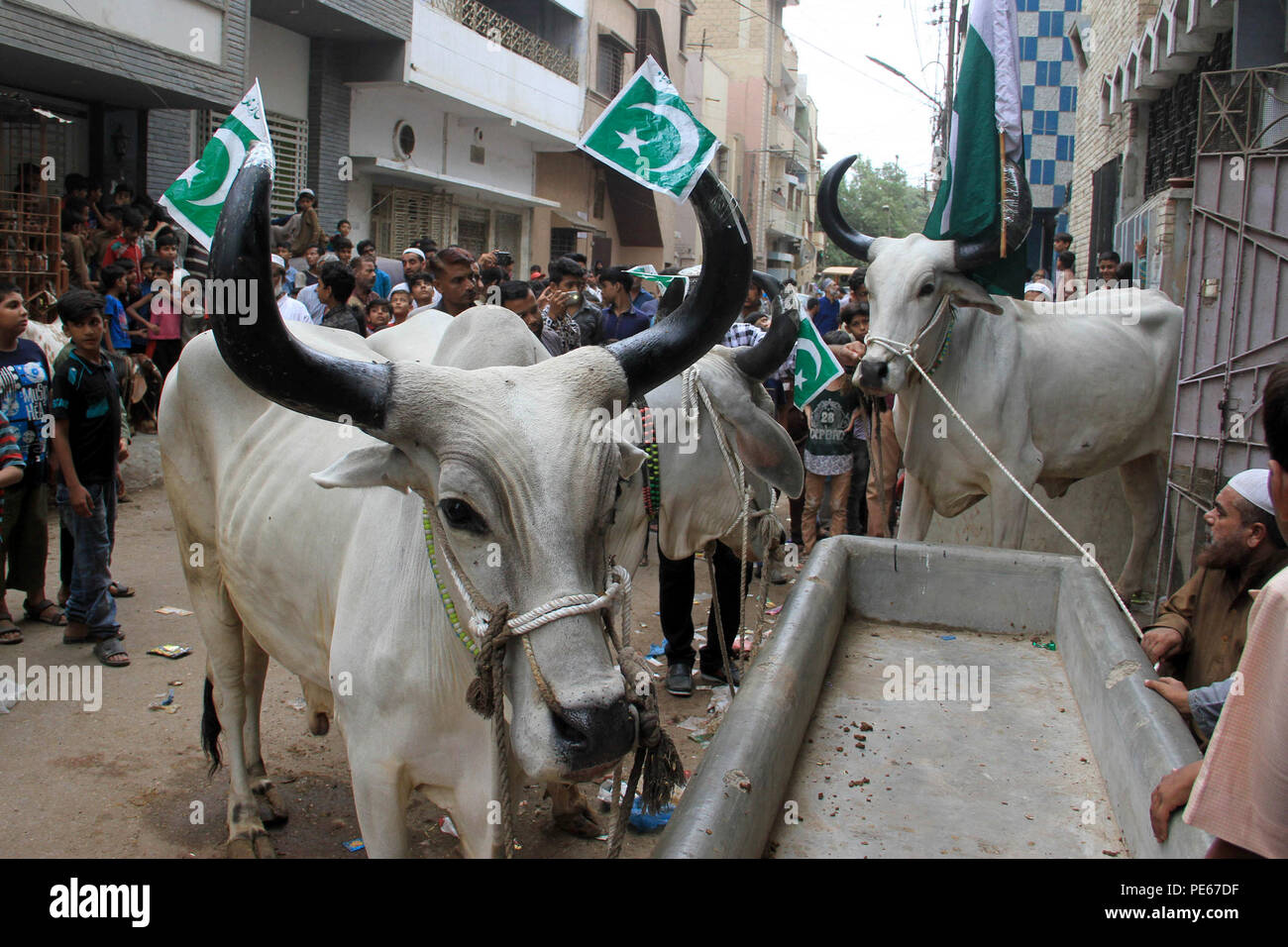 Karachi Vendor Stock Photos & Karachi Vendor Stock Images